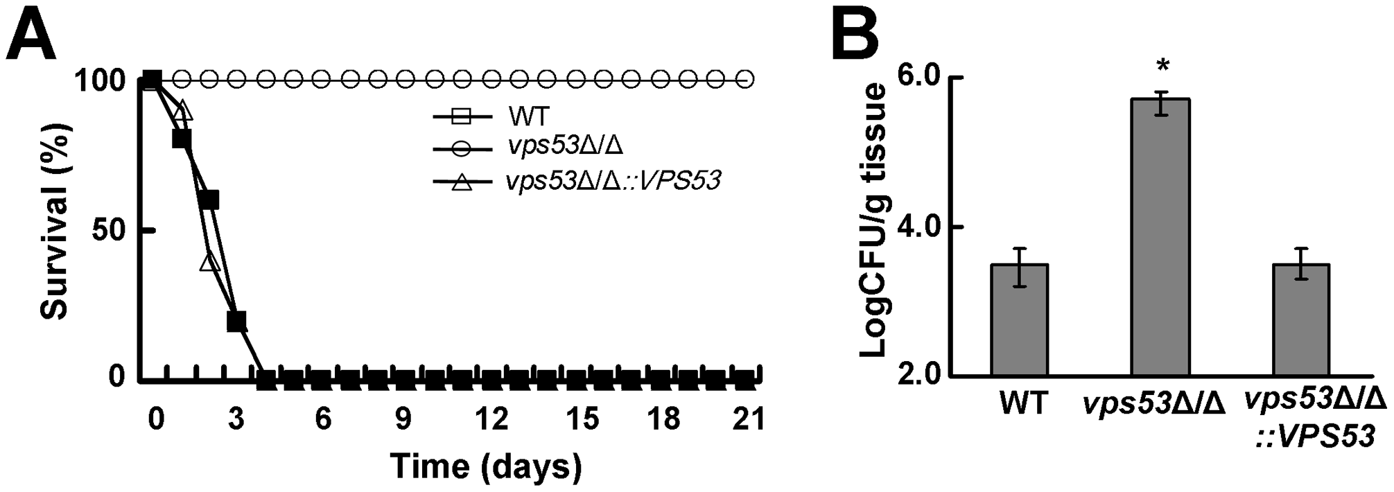 Deletion of <i>VPS53</i> causes reduced mortality and increased brain fungal burden during hematogenously disseminated candidiasis.