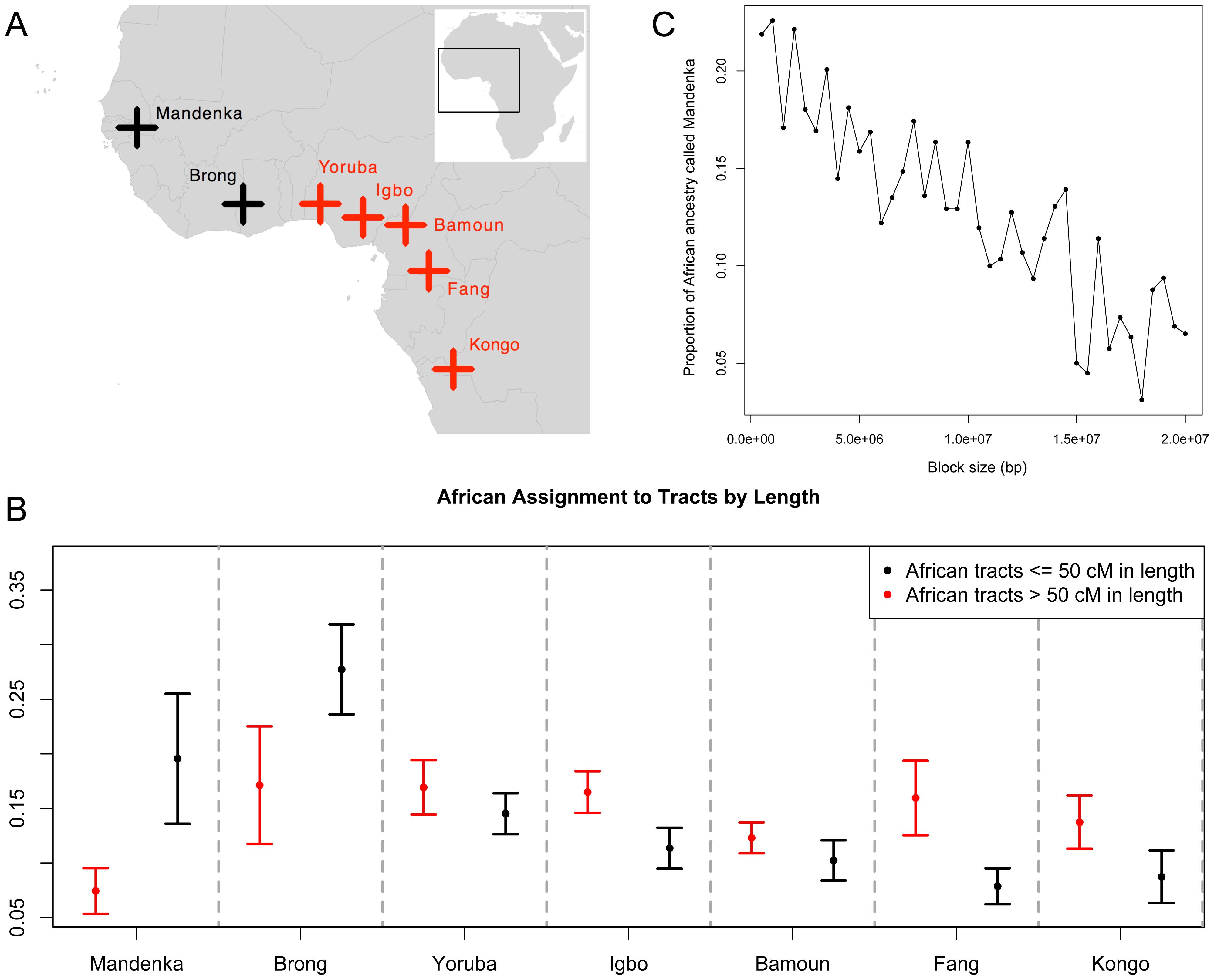 Sub-continental origin of Afro-Caribbean haplotypes of different sizes.