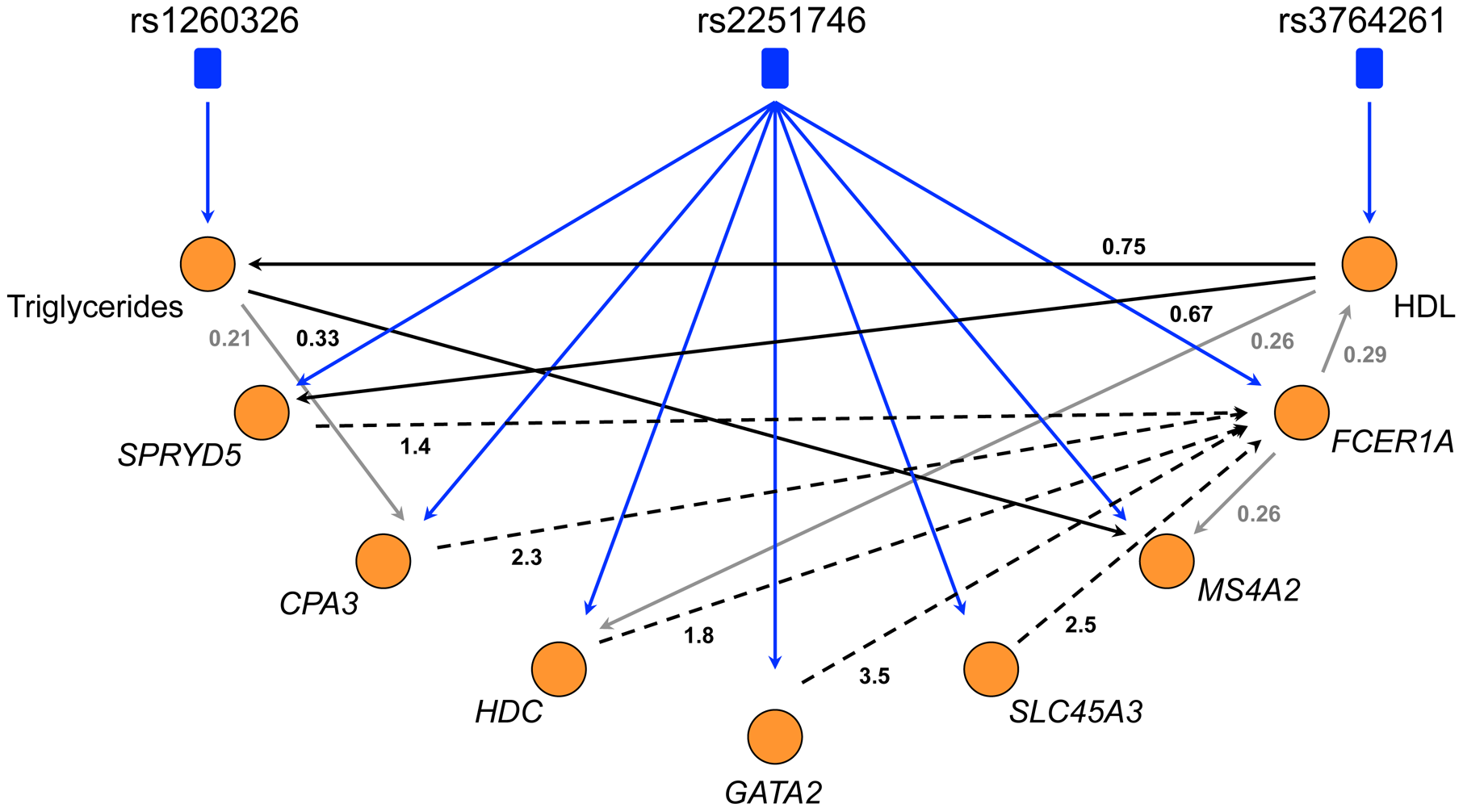The directed network of core LL module, HDL, and triglycerides.