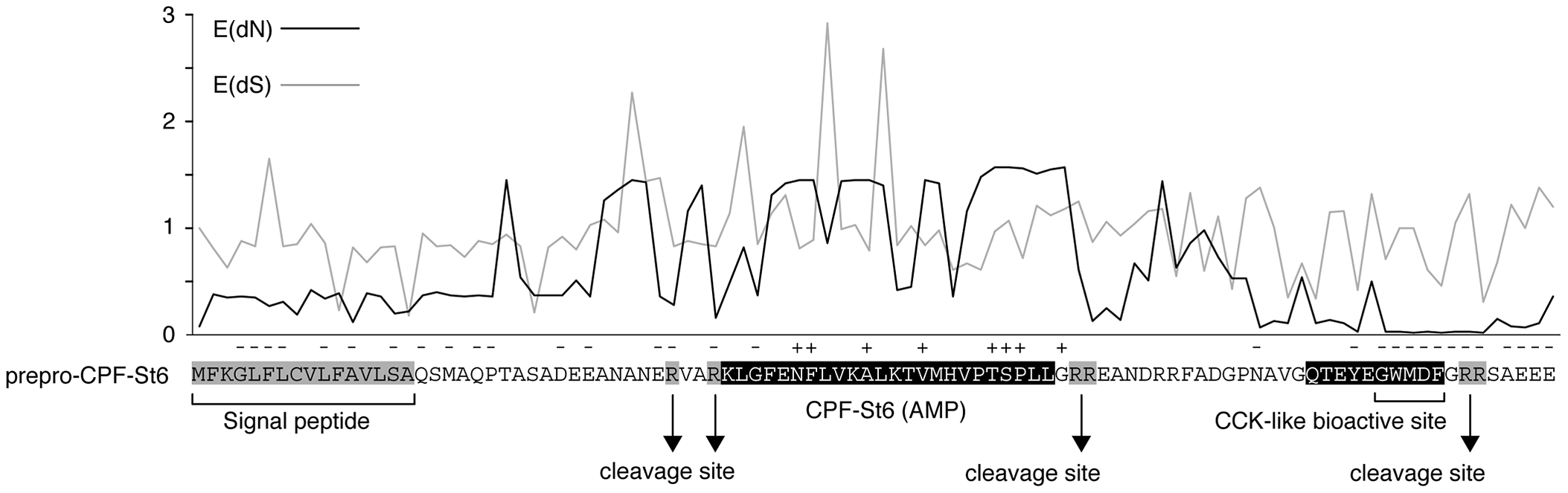 Patterns of diversifying and purifying selection in pipid AMP/HLP precursor proteins.