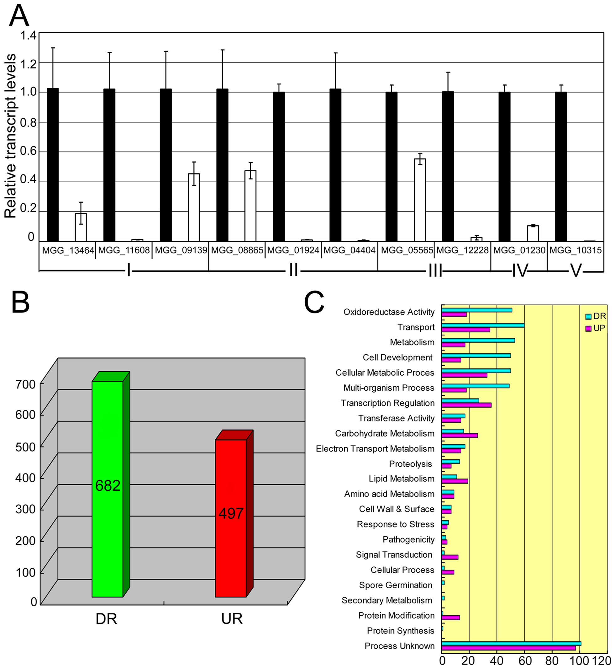 Differential gene expression analysis on transcriptomes of the <i>Moap1</i> mutant and Guy11 strains.