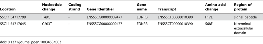 Description of non-synonymous exonic variants in the 53.5–55.5 Mb region of SSC11.