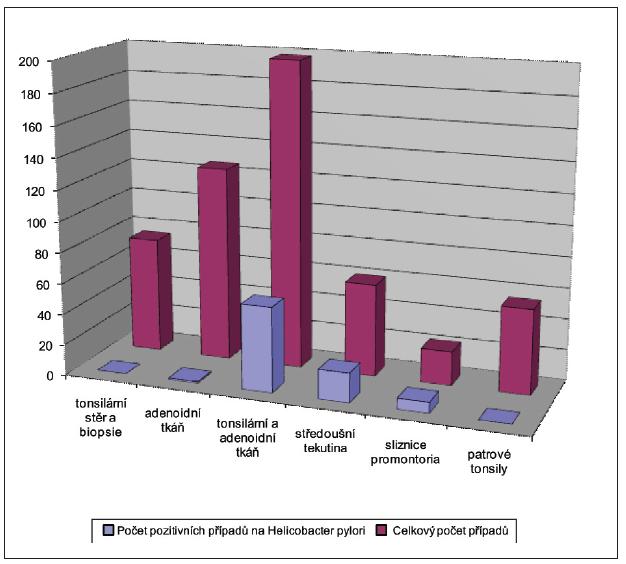 Detekce Helicobacter pylori metodou PCR.