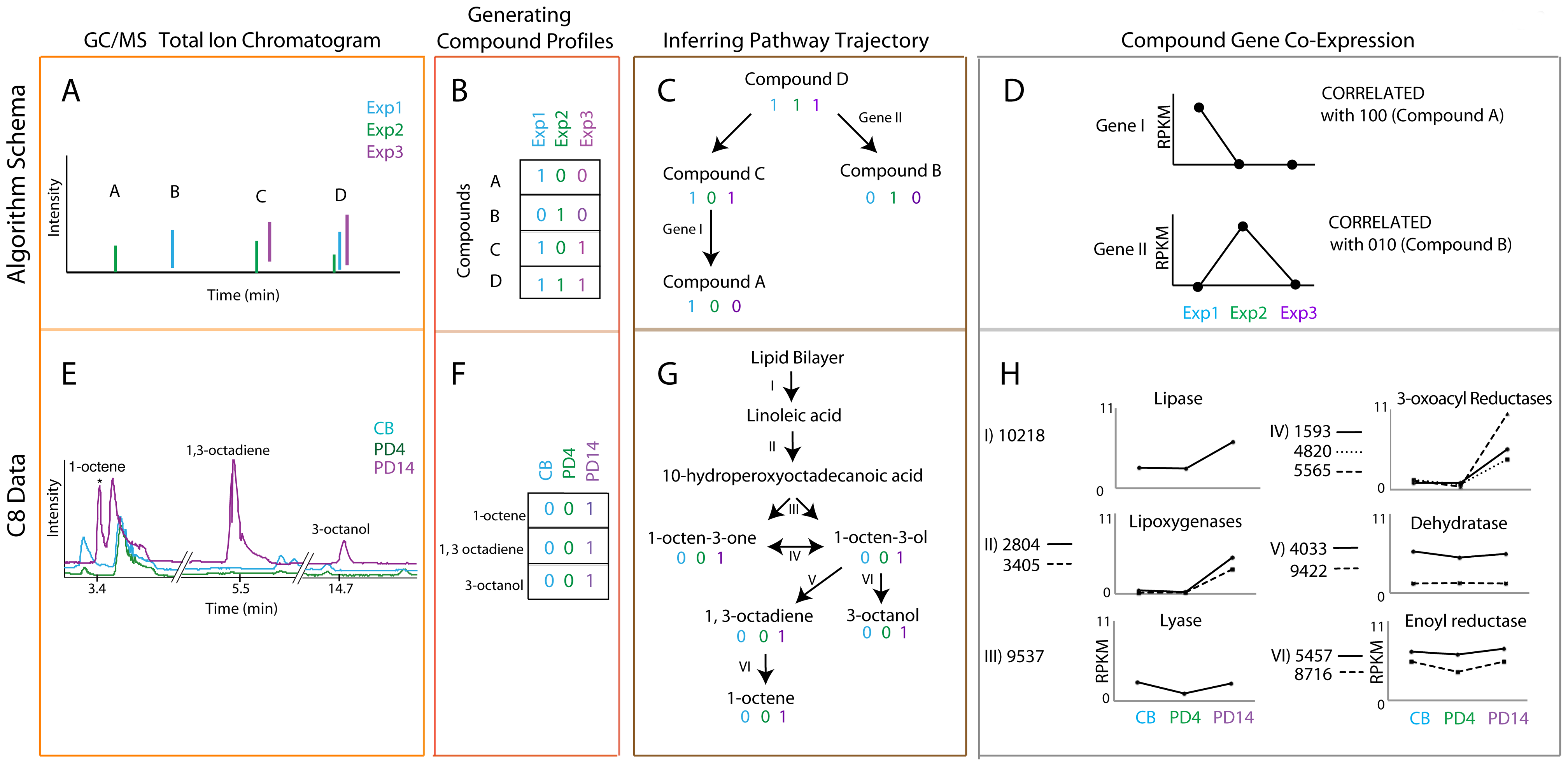 Coupled transcriptomics and metabolomics to generate pathway predictions.