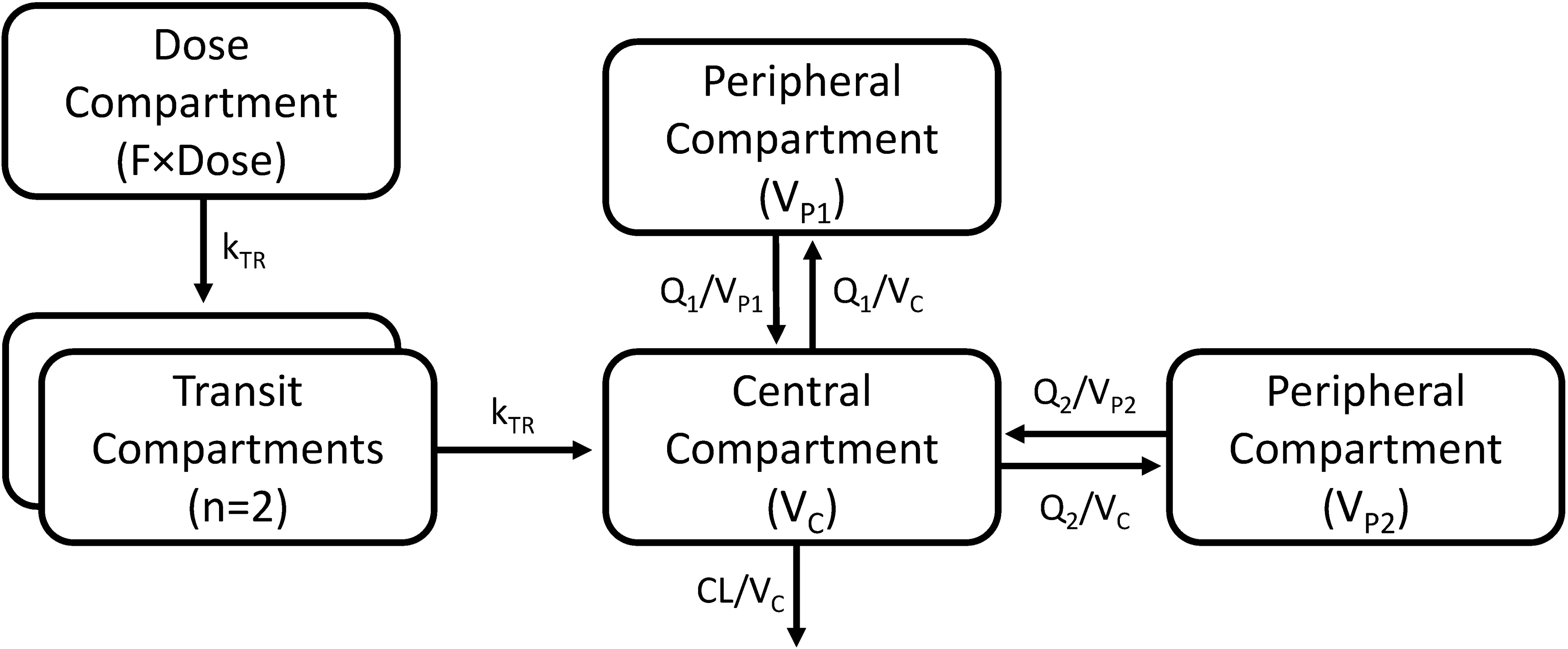 A graphical overview of the final piperaquine population pharmacokinetic model.