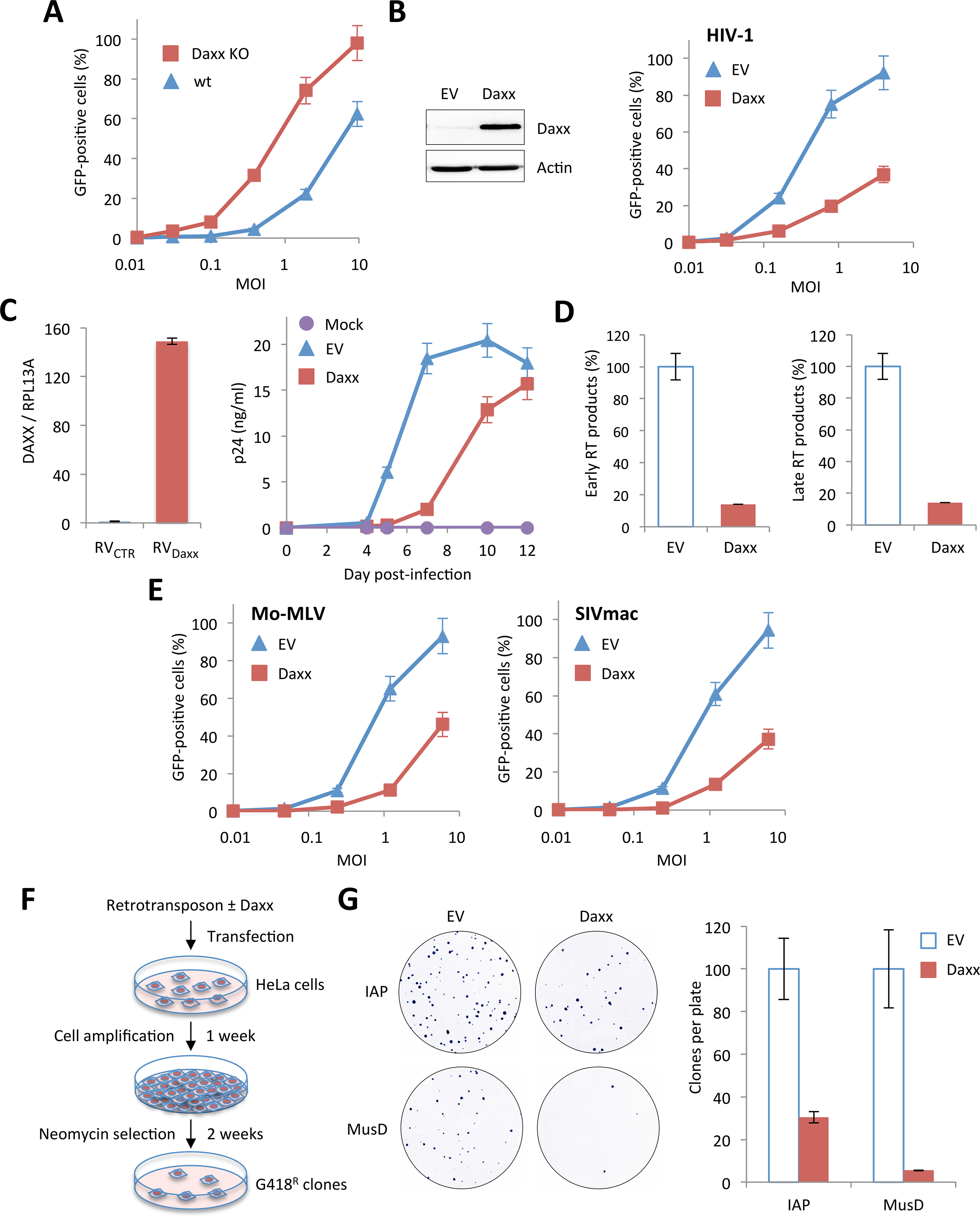 Inhibition of retroviral infections and retro-transposition by Daxx.
