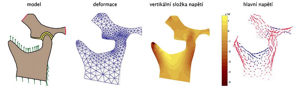 Série obrázků pro model č. 1 - a, b, c, d - zleva doprava.