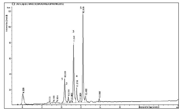 HPLC analýza flavonoidů methanolického extraktu Capsella bursa-pastoris