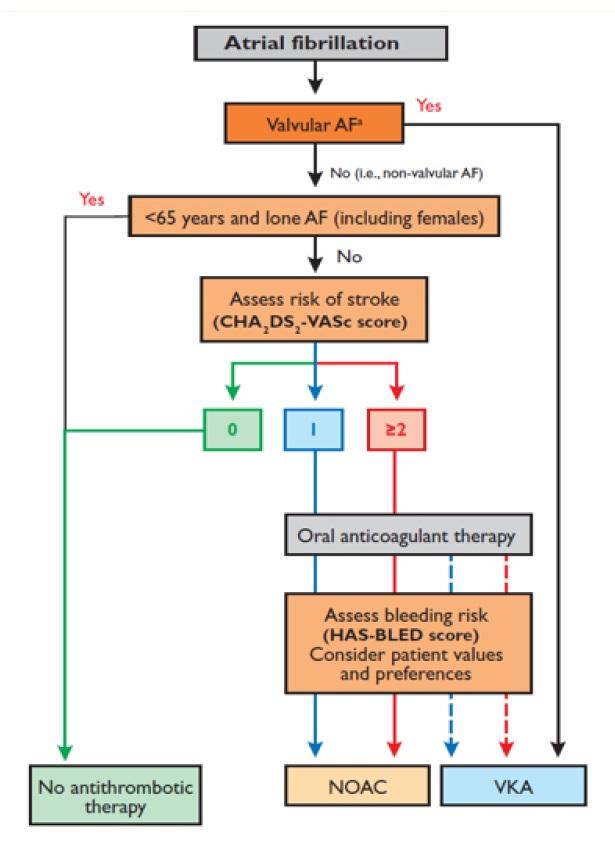 Algoritmus pro rozhodování AF – Atrial Fibrillation, NOAC – nová perorální antikoagulancia, VKA – antagonisté vitaminu K (Převzato z originálního textu.)