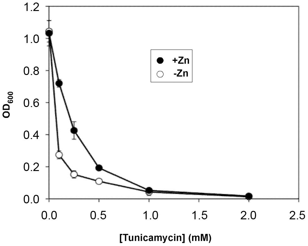 Effects of zinc status on sensitivity to an ER stress inducer.