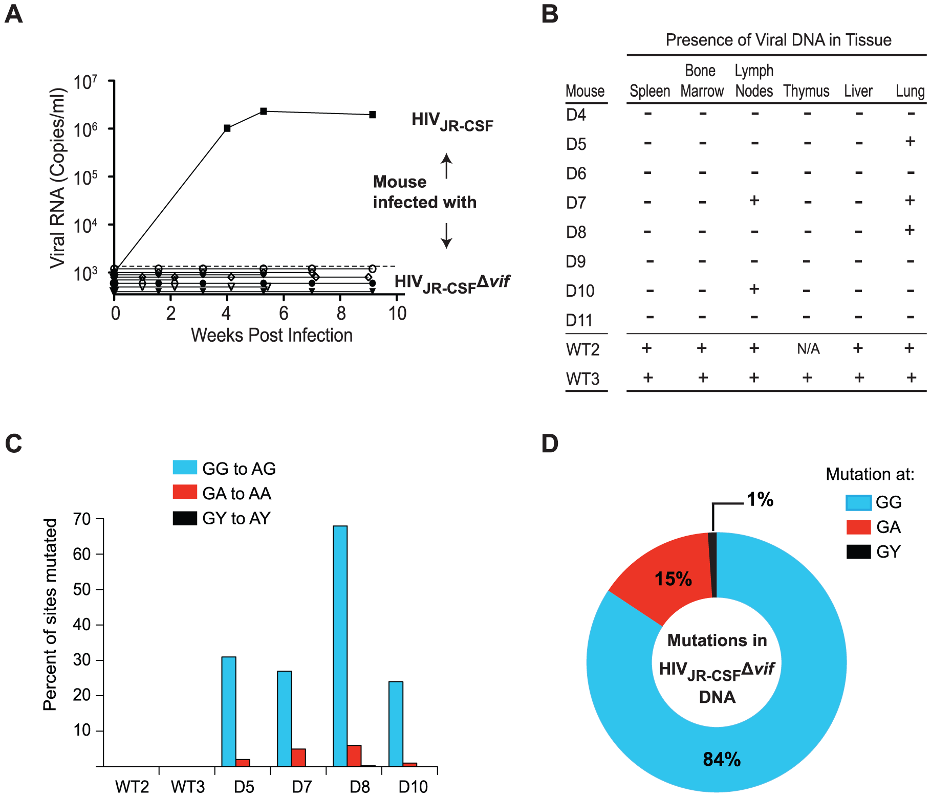 <i>vif</i>-deleted HIV-1<sub>JR-CSF</sub> does not overcome APOBEC3 restriction <i>in vivo</i>.
