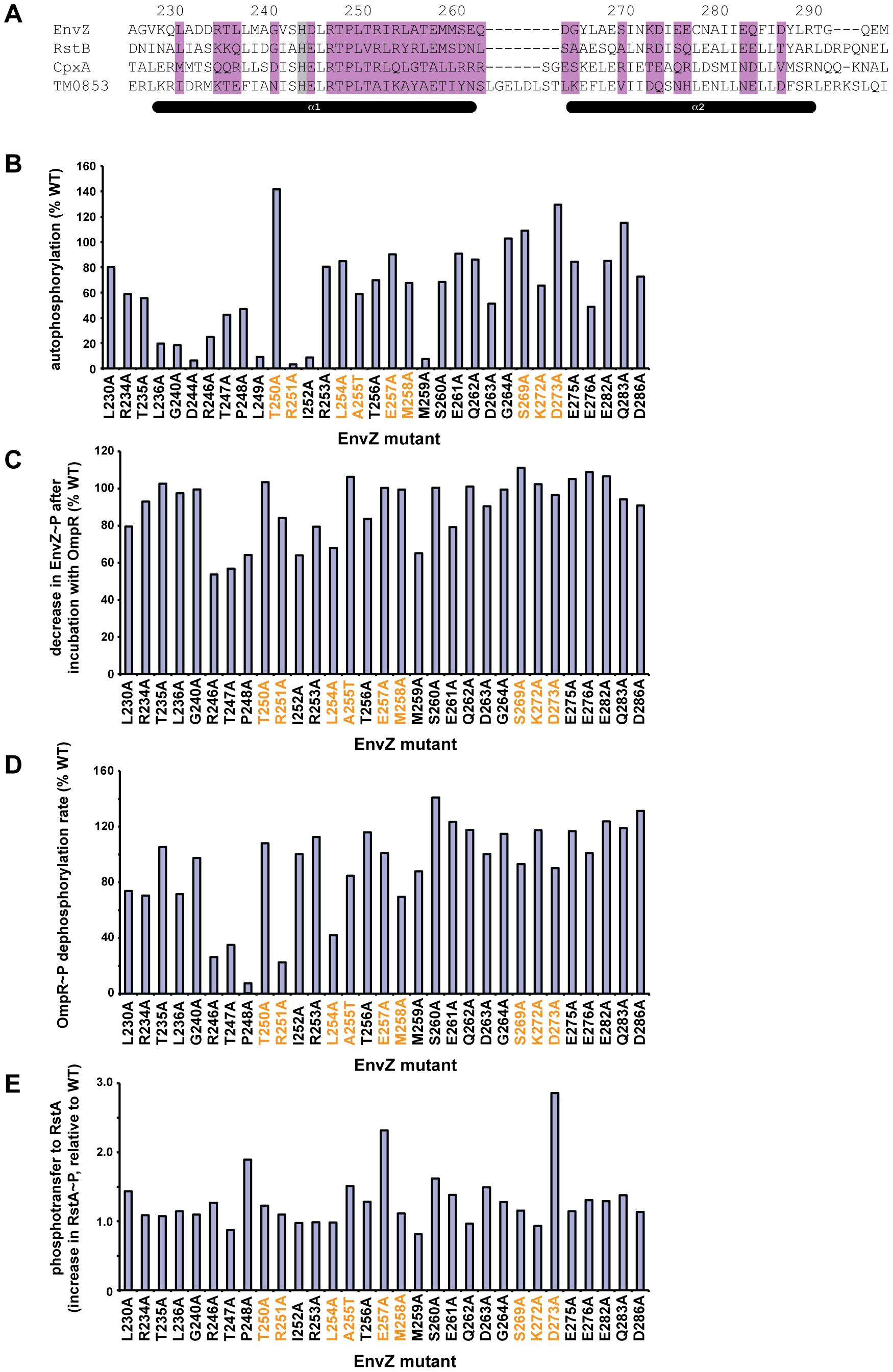 Alanine-scanning mutagenesis of EnvZ.
