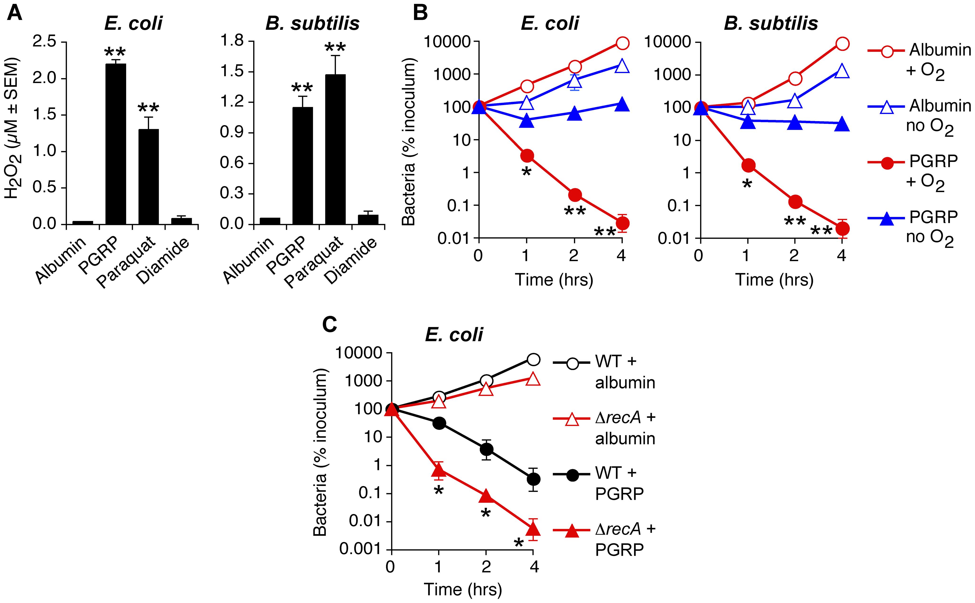 PGRP induces H<sub>2</sub>O<sub>2</sub> production, requires O<sub>2</sub> for killing, and the killing involves DNA damage.