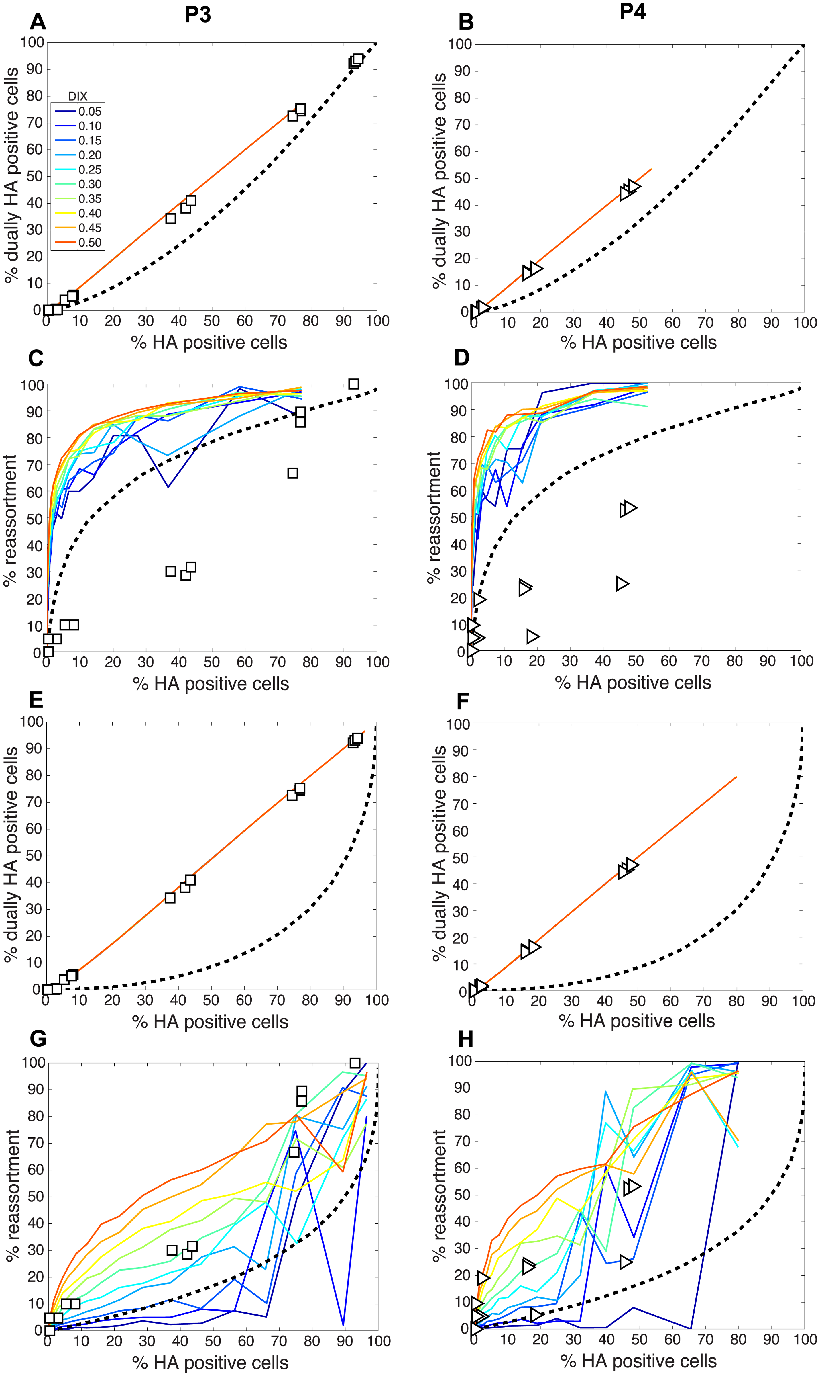 Comparison of modeled and experimentally determined relationships among % HA positive cells, % dually HA positive cells and % reassortment in the presence of DI particles.
