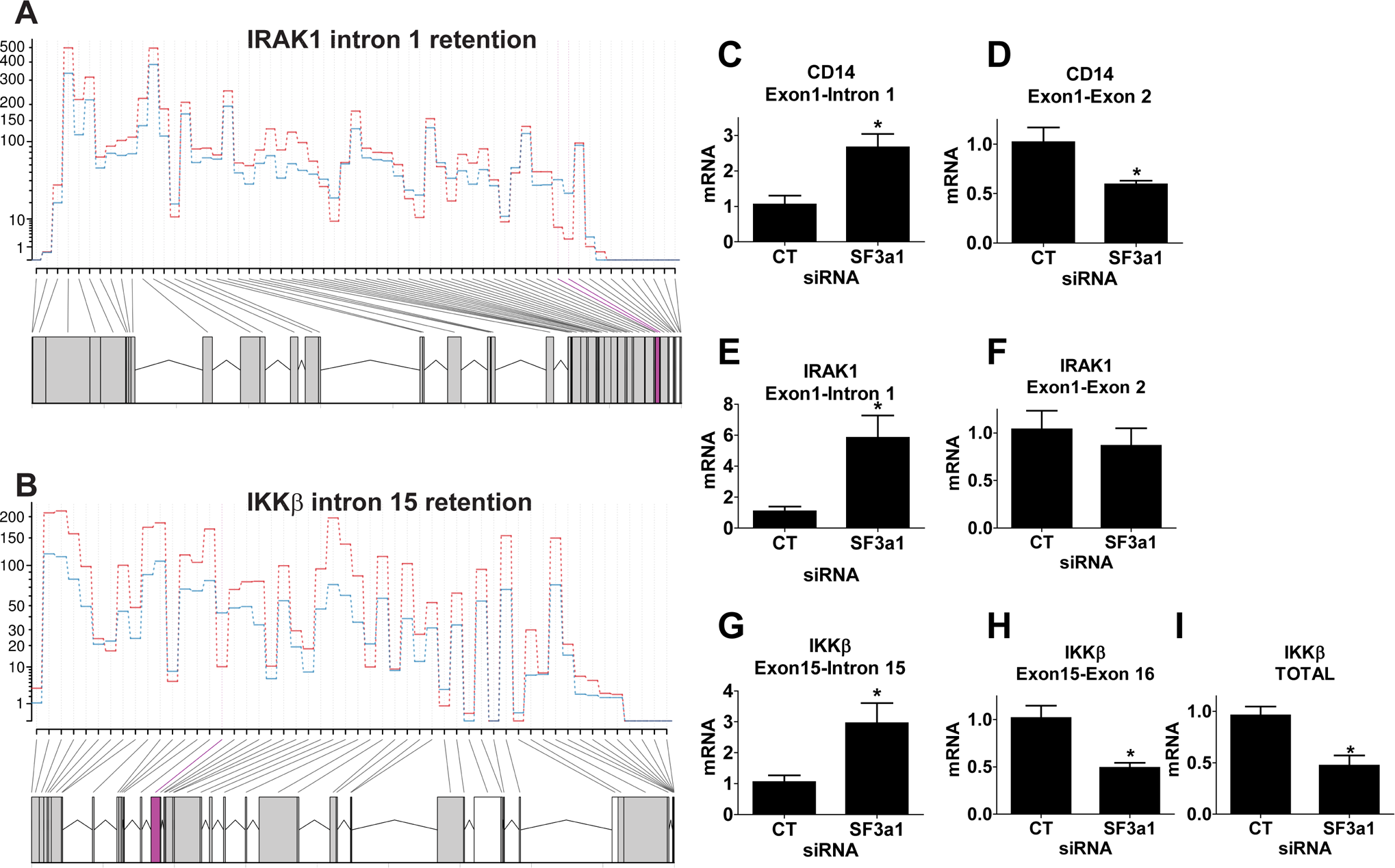 SF3a1 inhibition leads to intron retention in several TLR signaling pathway genes.