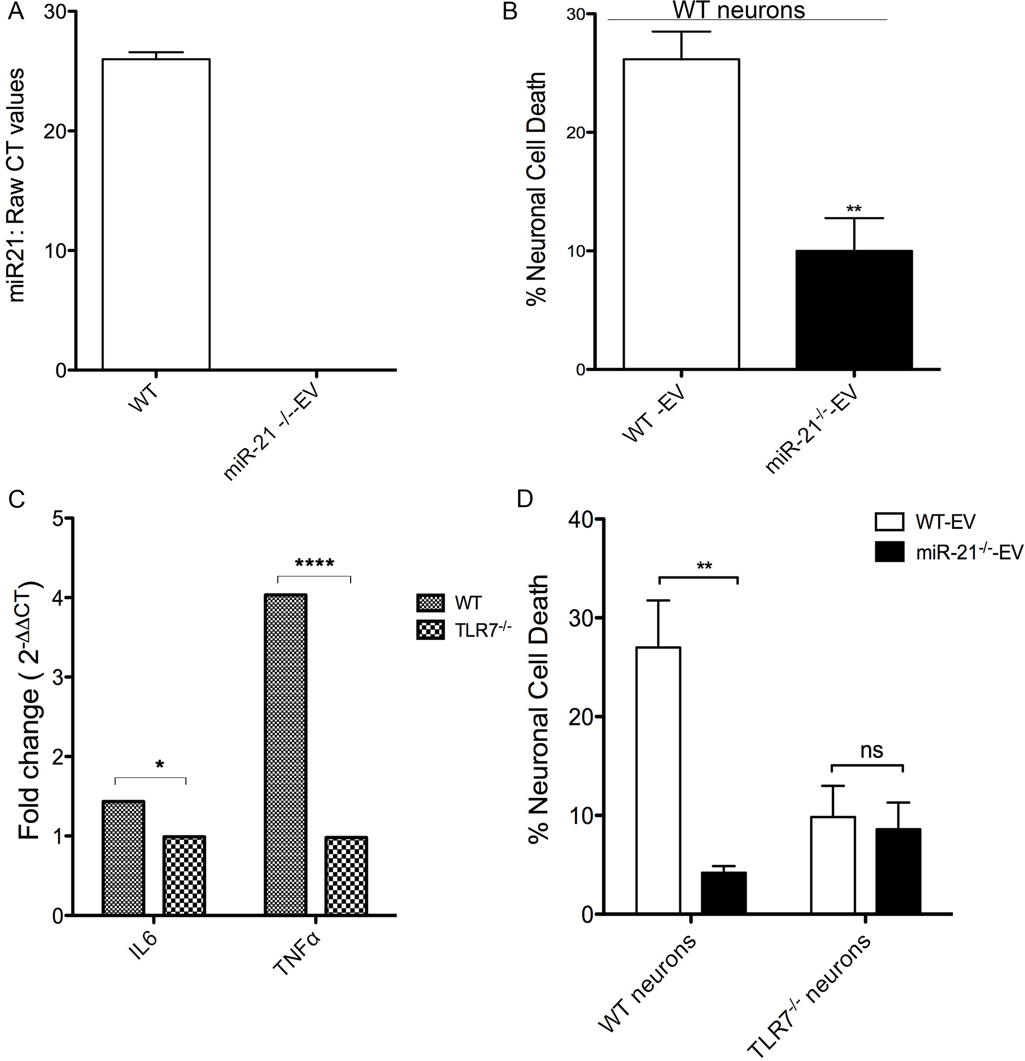 In vitro neurotoxicity assays with exosomes from bone marrow derived macrophage (BMDM) cultures.