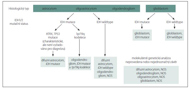 Schéma 1. Zjednodušený algoritmus nové klasifikace difuzních gliomů CNS na základě integrované diagnostiky propojením fenotypových a genotypových znaků nádoru (upraveno dle [21]).