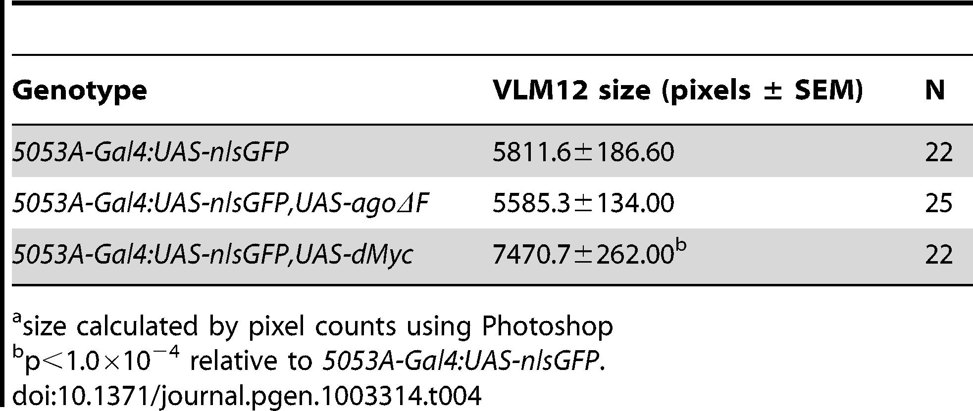 Effects of <i>ago</i> and <i>dMyc</i> on VLM12 size.<em class=&quot;ref&quot;>a</em>