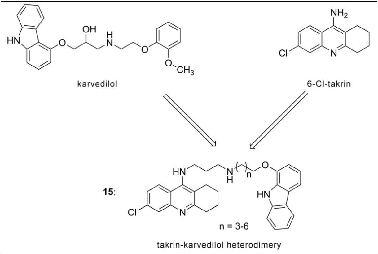 Designová strategie takrin-karvedilol heterodimerů