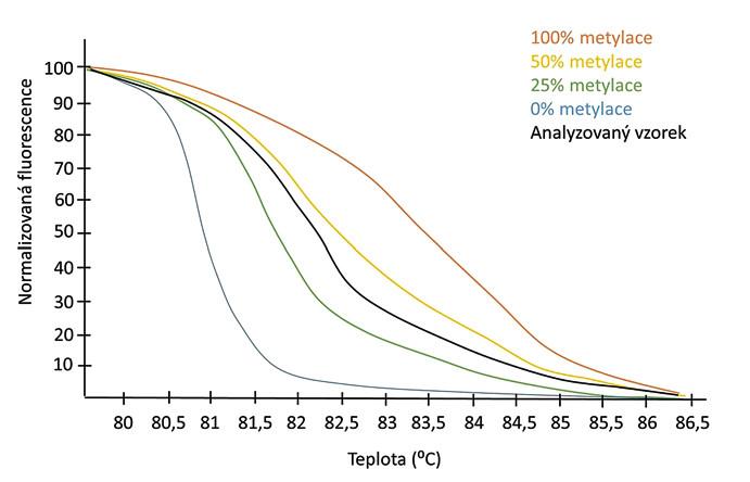 Typický normalizovaný výsledek MS-HRM. Fluorescenční profily, získané při zvyšující se teplotě, se liší v závislosti na původním stupni metylace amplifikovaného úseku DNA. Křivky tání kontrolních vzorků (metylovaná a demetylovaná DNA smíchané v různých poměrech) umožní určit stupeň metylace analyzovaného vzorku.