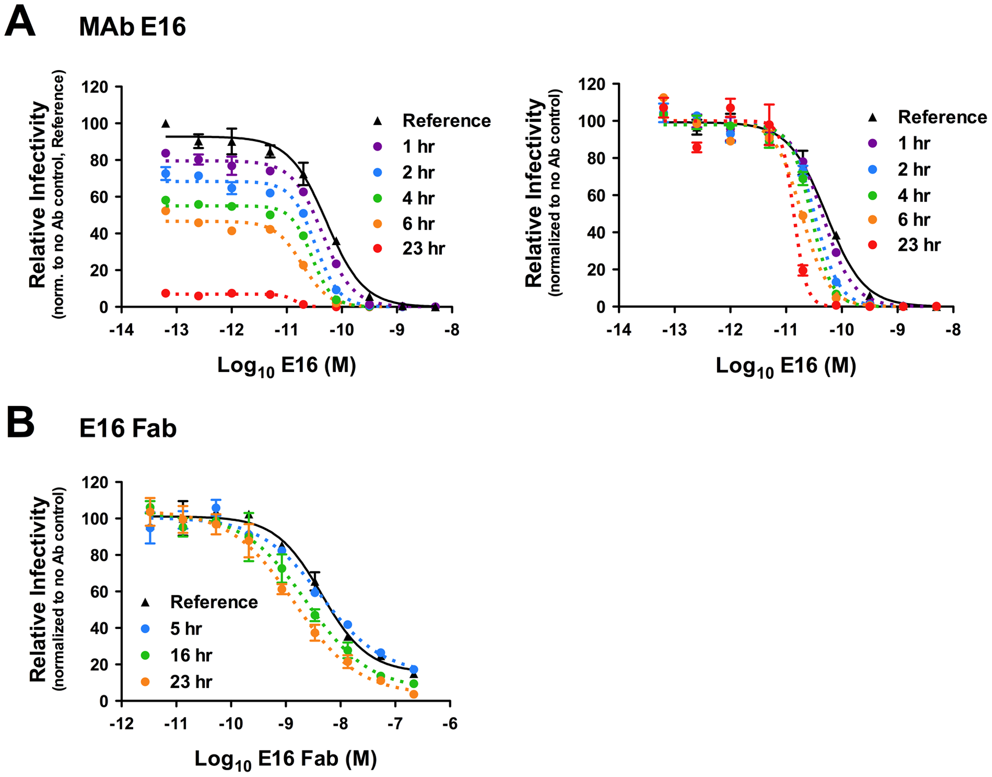 Kinetic changes in antibody-mediated neutralization of WNV infection by the DIII-specific MAb E16.