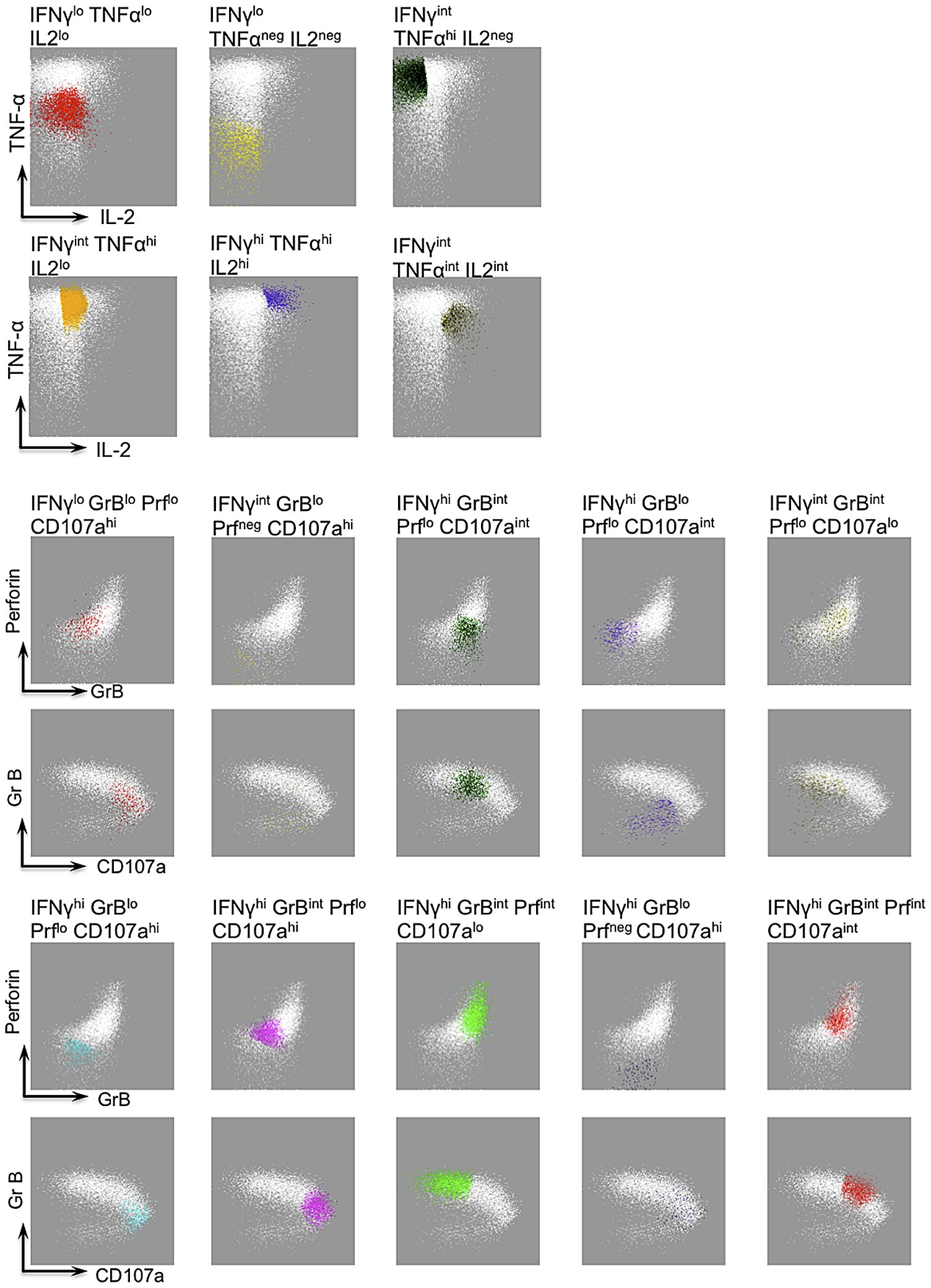 FLOCK gating strategy and description of IFN-g functional populations.