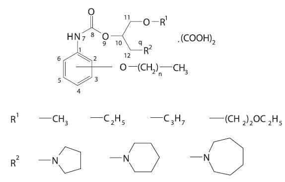 Štruktúra študovaných derivátov alkoxyfenylkarbámových kyselín, n = 2 – 6 (dĺžka postranného reťazca)