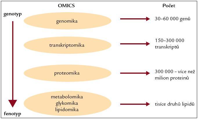 Současné z genetiky odvozené -omiky.