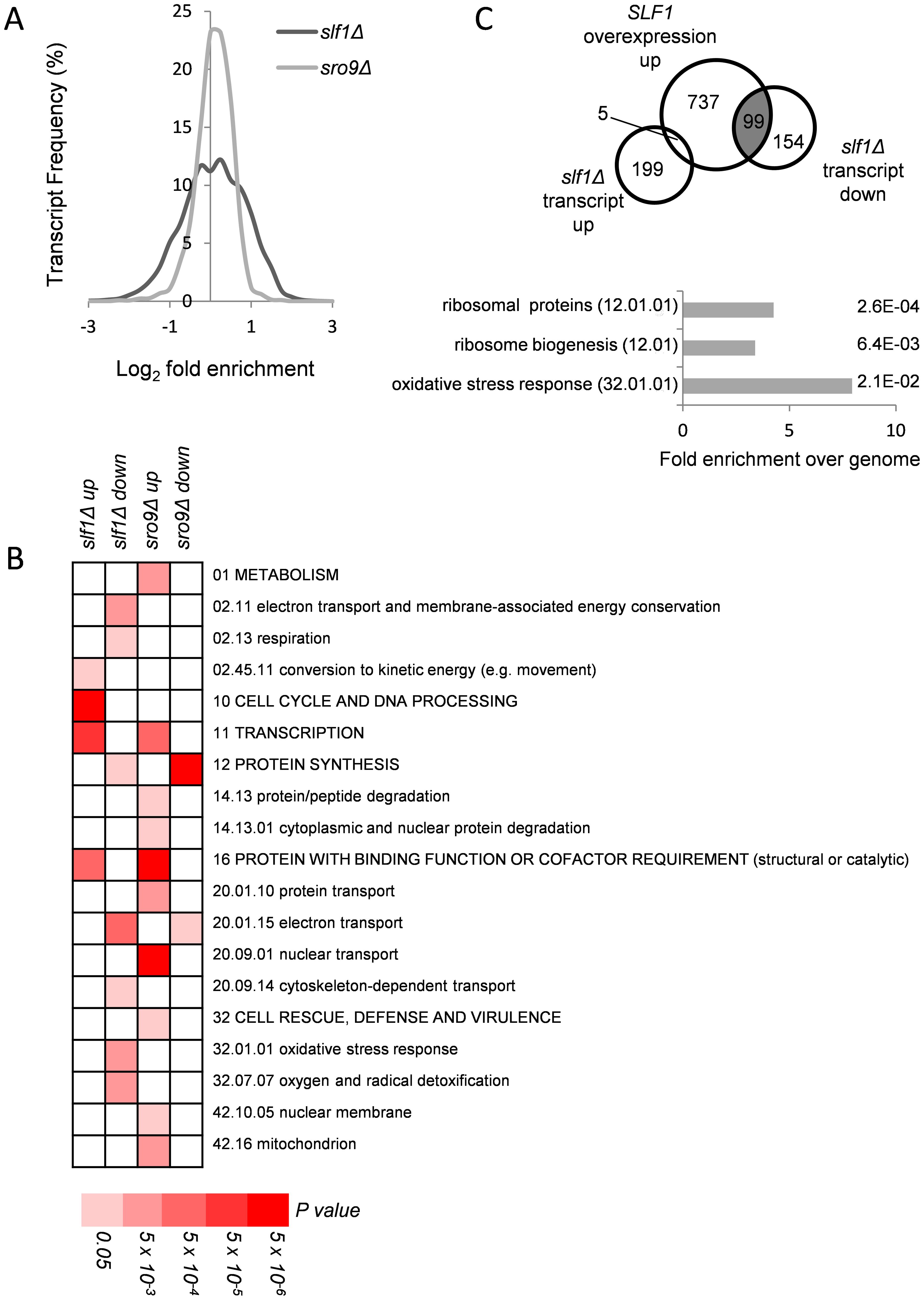 Alterations in mRNA abundance in <i>slf1</i> and <i>sro9</i> deletion mutants.