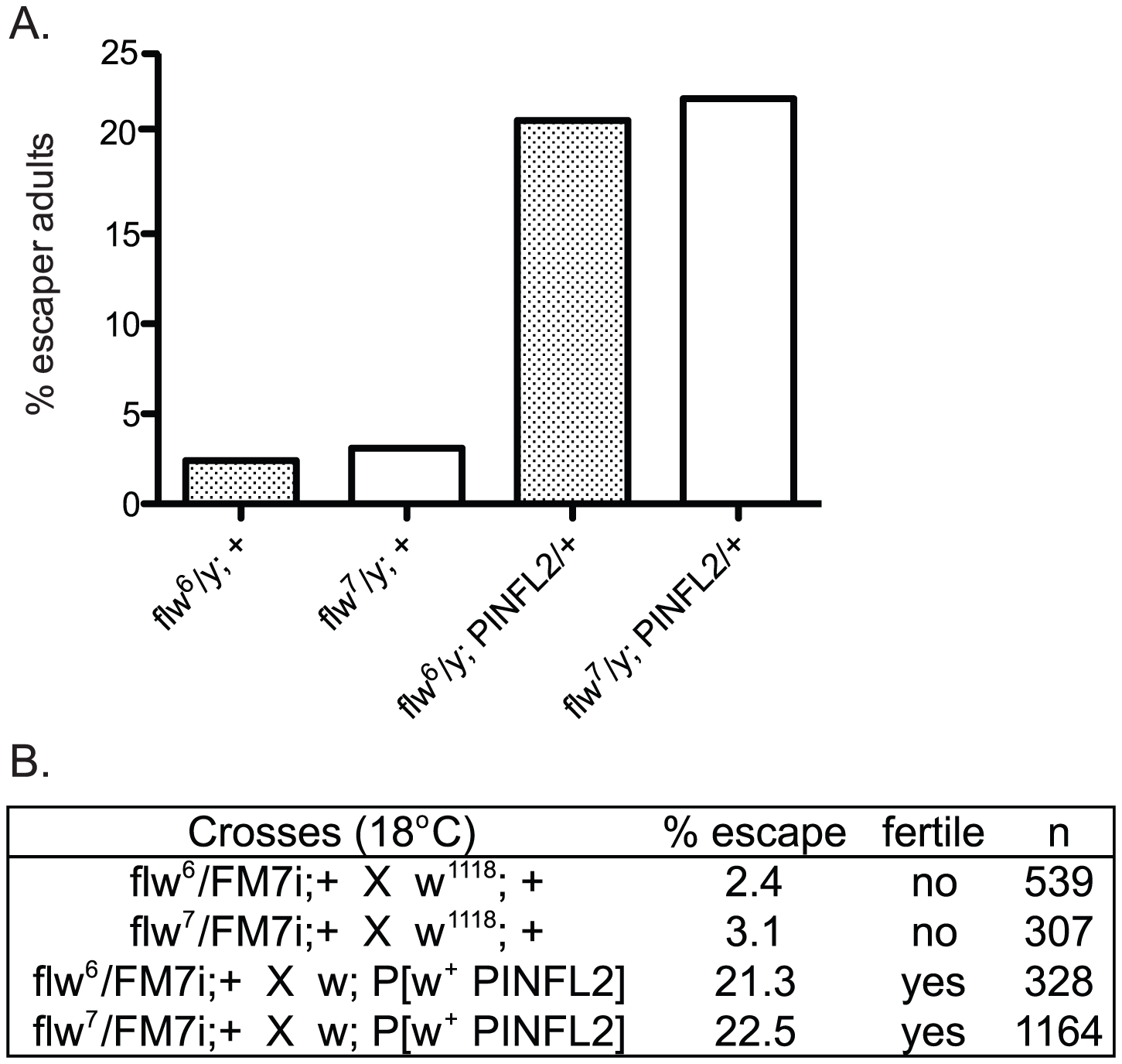 Expression of transgenic PINCH increases the number of <i>flw</i> adult male escapers and restores their fertility.