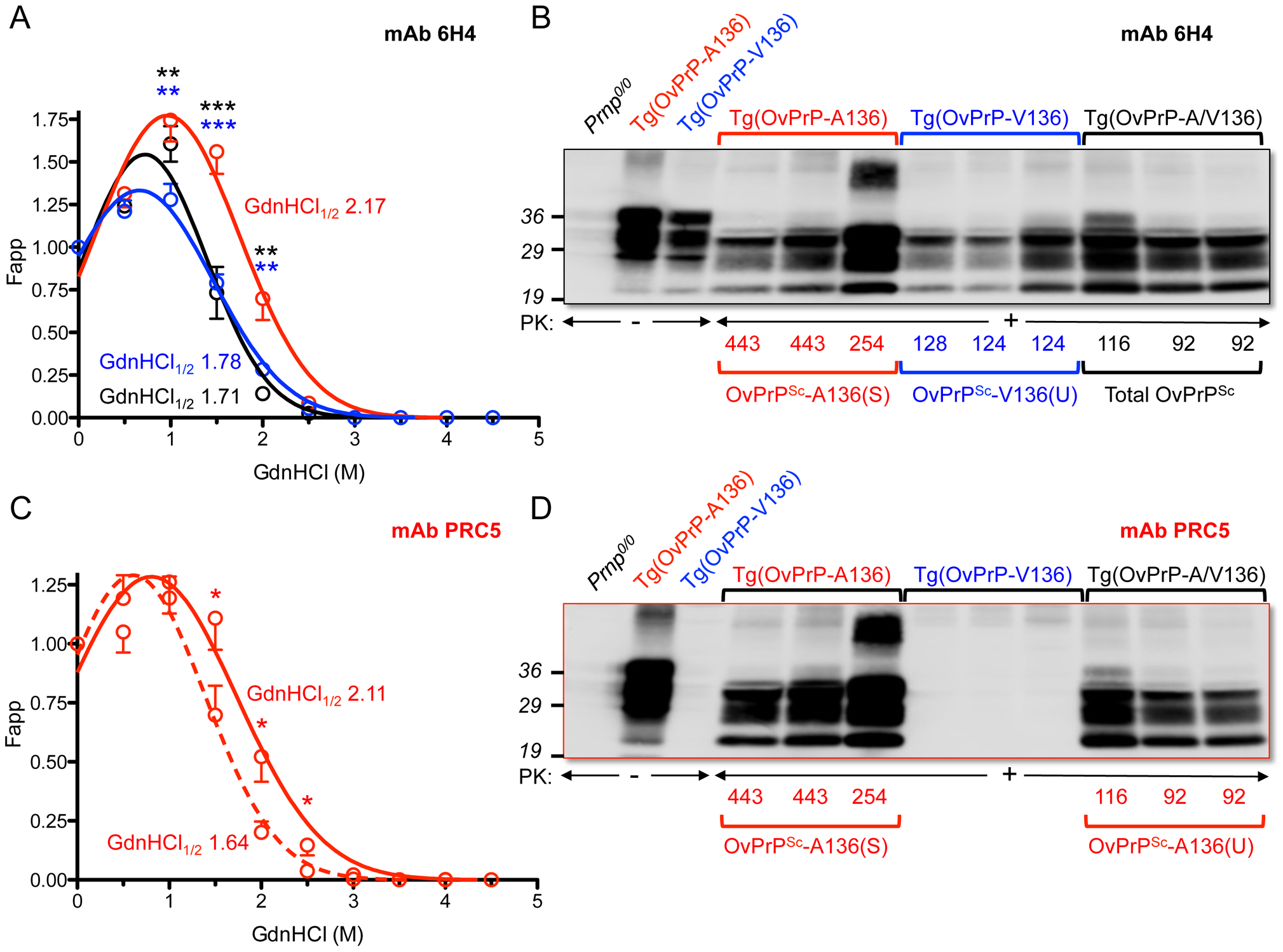 Analyses of PrP<sup>Sc</sup> in the brains of SSBP/1 infected mice.