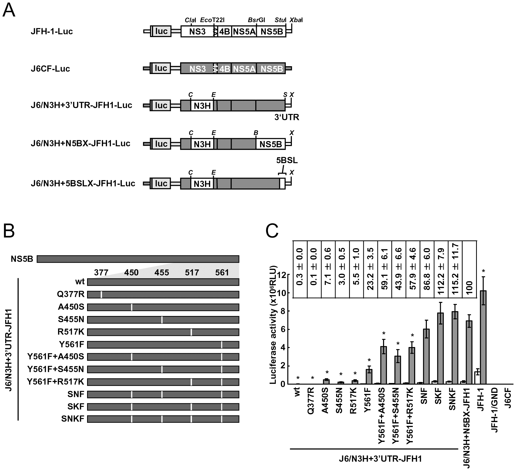 Luciferase activity of J6CF backbone replicons containing substitutions in the NS5B region.
