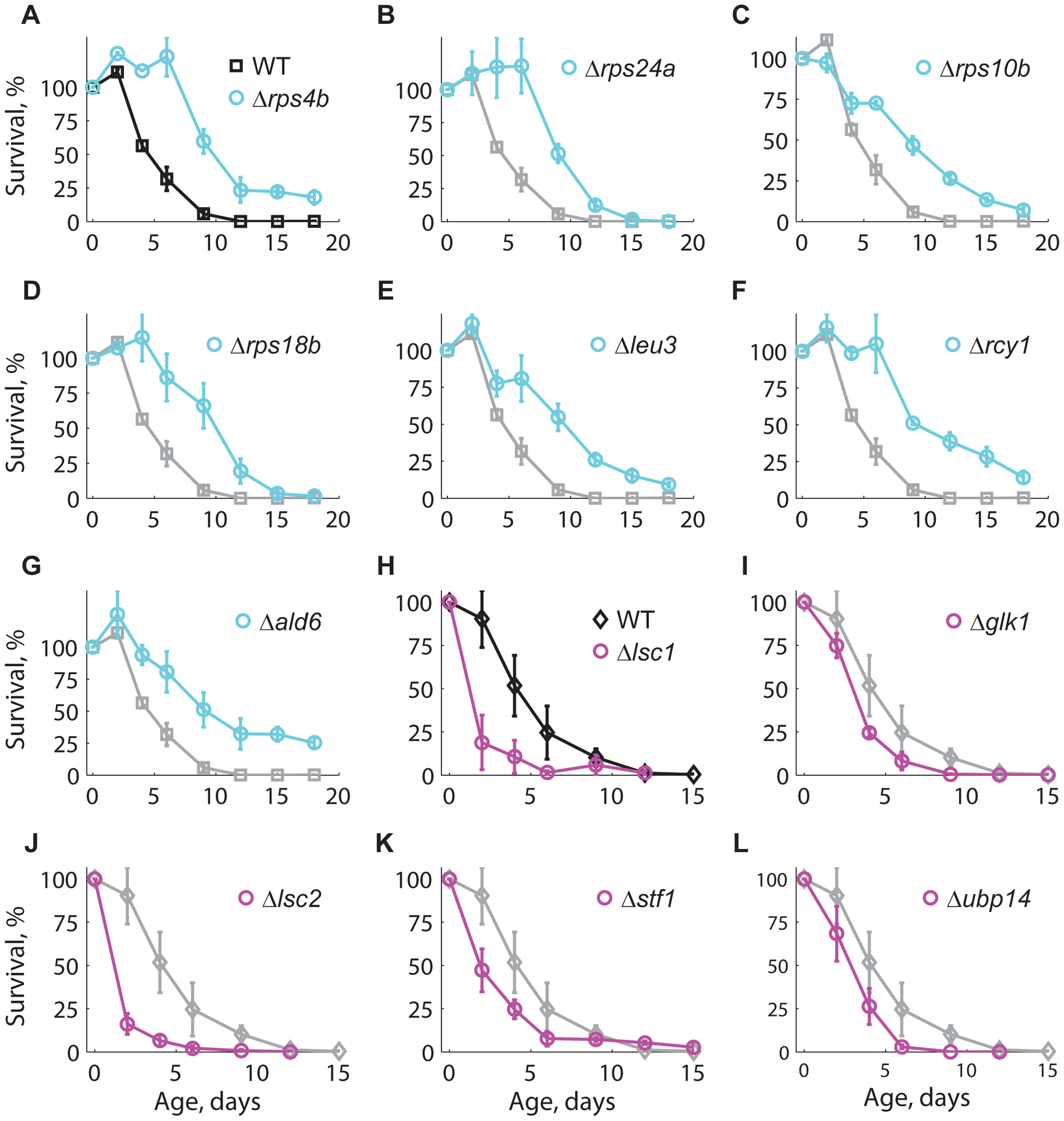 Longevity phenotypes were confirmed using the standard CLS method.