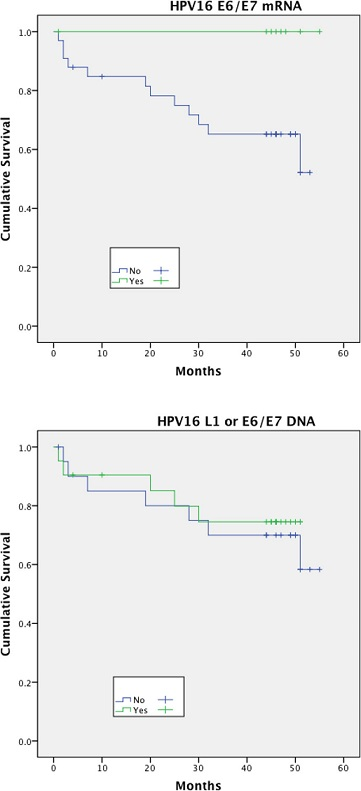 Disease free survival (DFS)<sup>†</sup> stratified by HPV mRNA/DNA (Log- Rank multiple regression analysis <i>p</i> = 0.04 and <i>p</i> = 0.68, respectively)