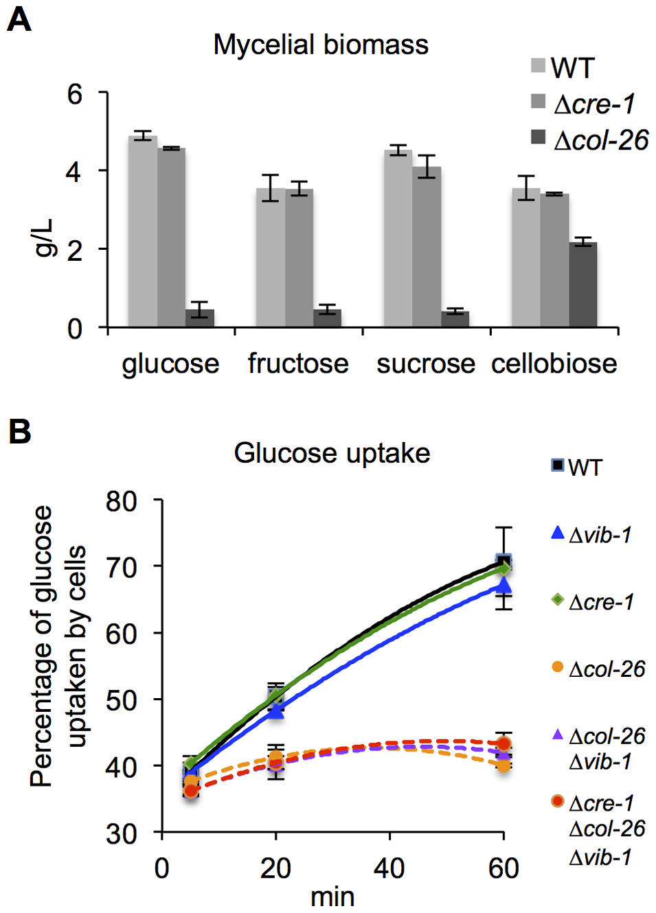 Deletion of <i>col-26</i> causes defects in glucose sensing/metabolism.