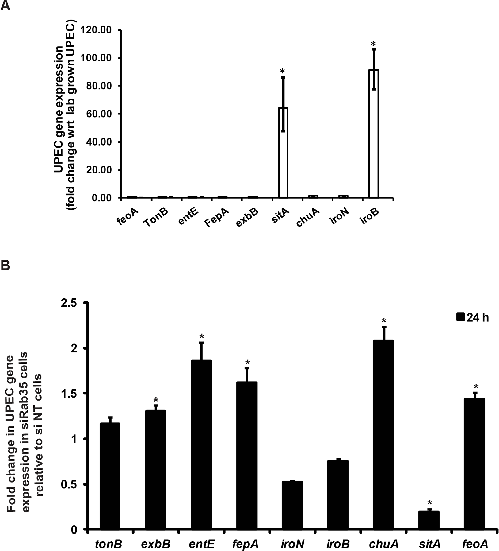 (A) and (B) Genes involved in iron acquisition are differentially expressed by UPEC in the absence of Rab35.