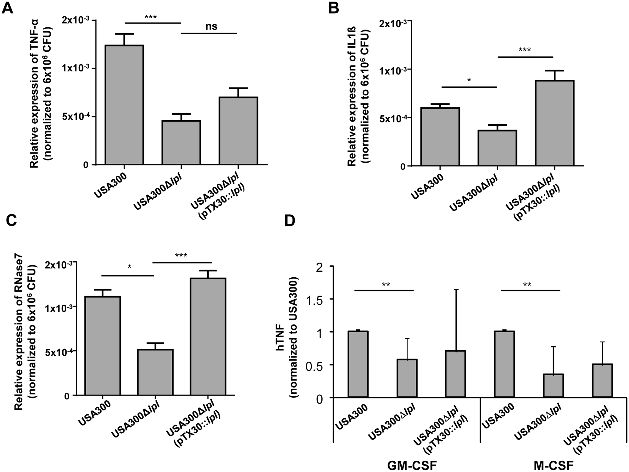 Cytokine and antimicrobial peptide (AMP) expression in differentiated primary human keratinocytes and macrophages.