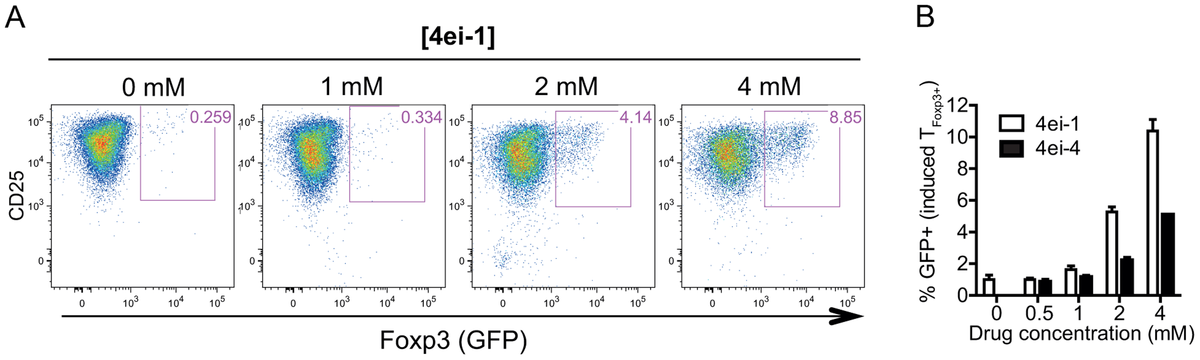 Inhibition of eIF4E activity results in spontaneous induction of Foxp3 expression in activated T<sub>Foxp3−</sub> cells.