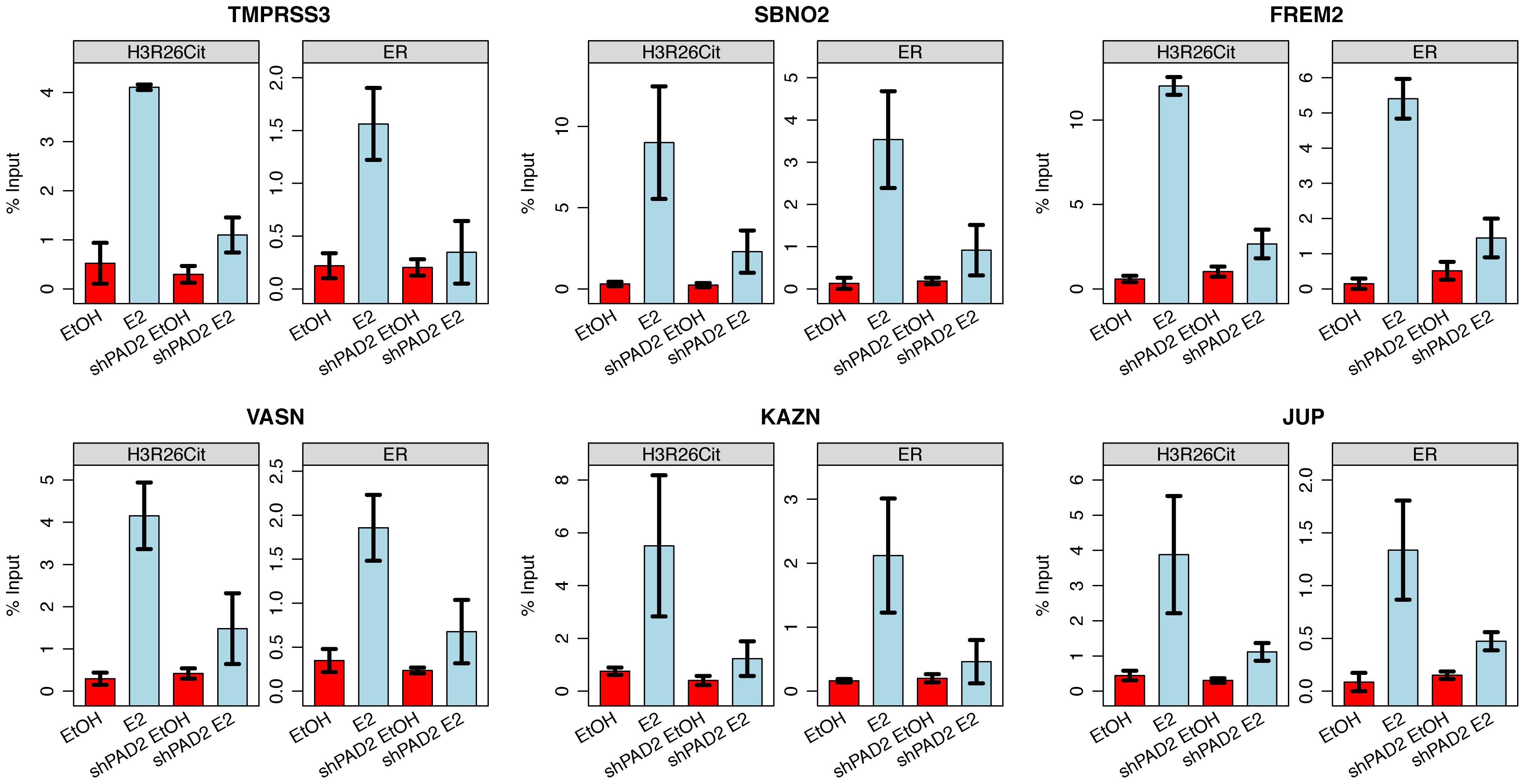 PAD2 depletion abrogates deimination of H3R26 and ER binding.