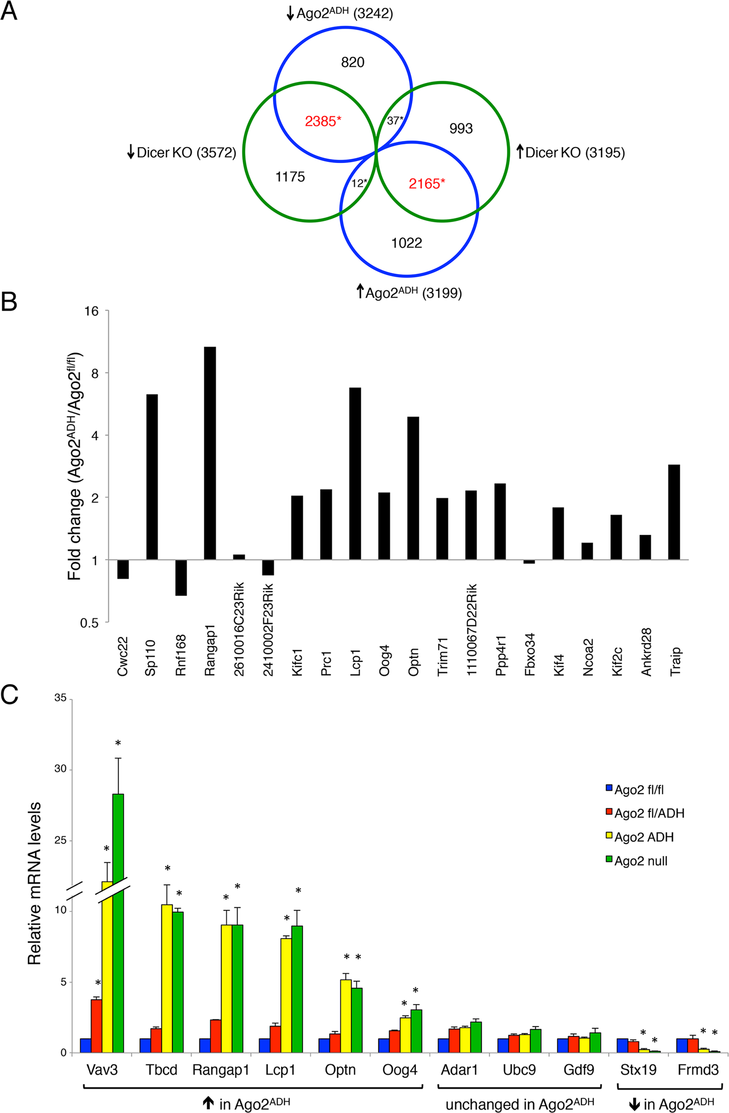 Extensive transcriptome changes, and high correlation with <i>Dicer</i> KO oocytes, in <i>Ago2</i><sup>ADH</sup> oocytes.