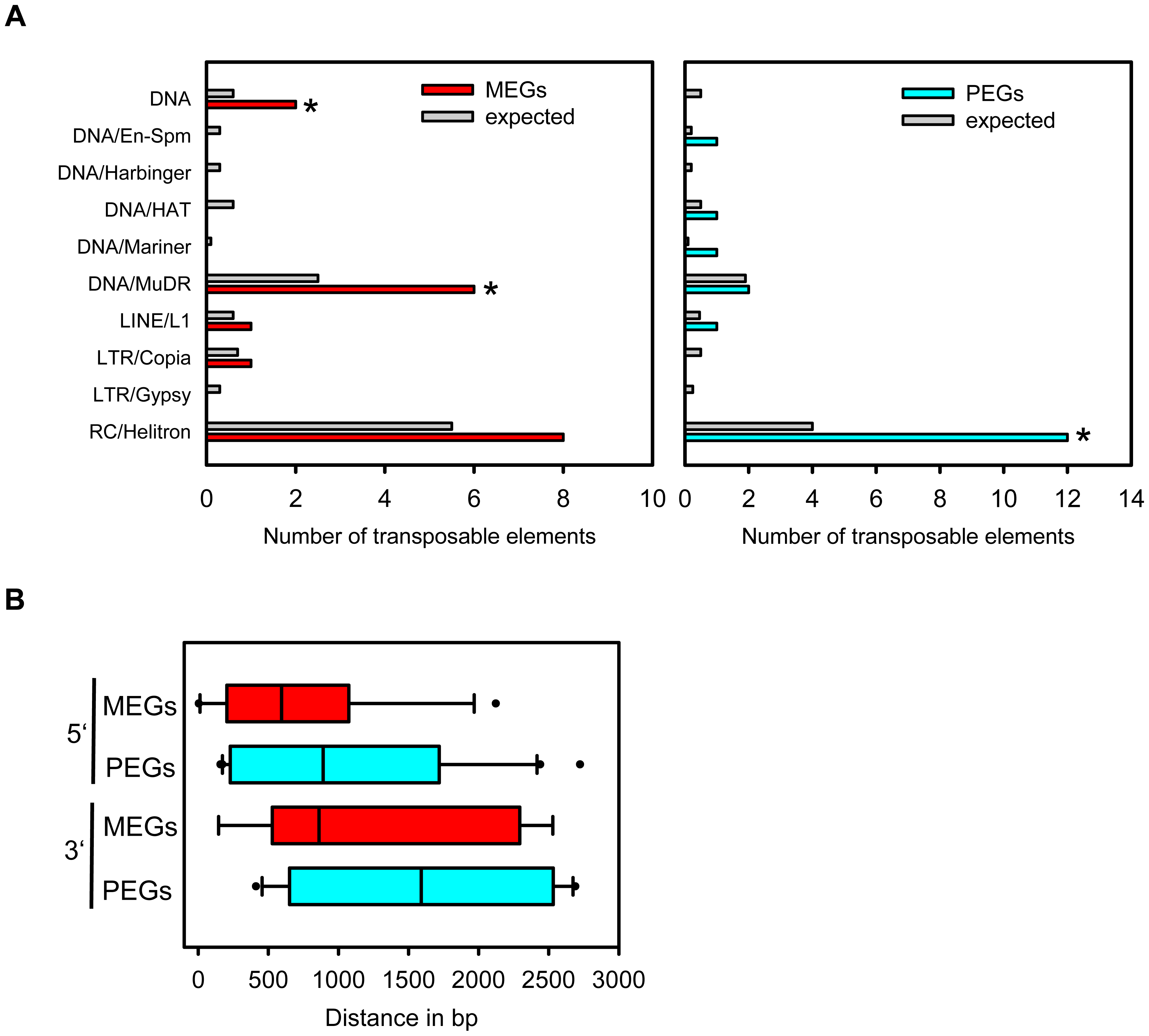 Types of Transposable Elements in the Vicinity of MEGs and PEGs.