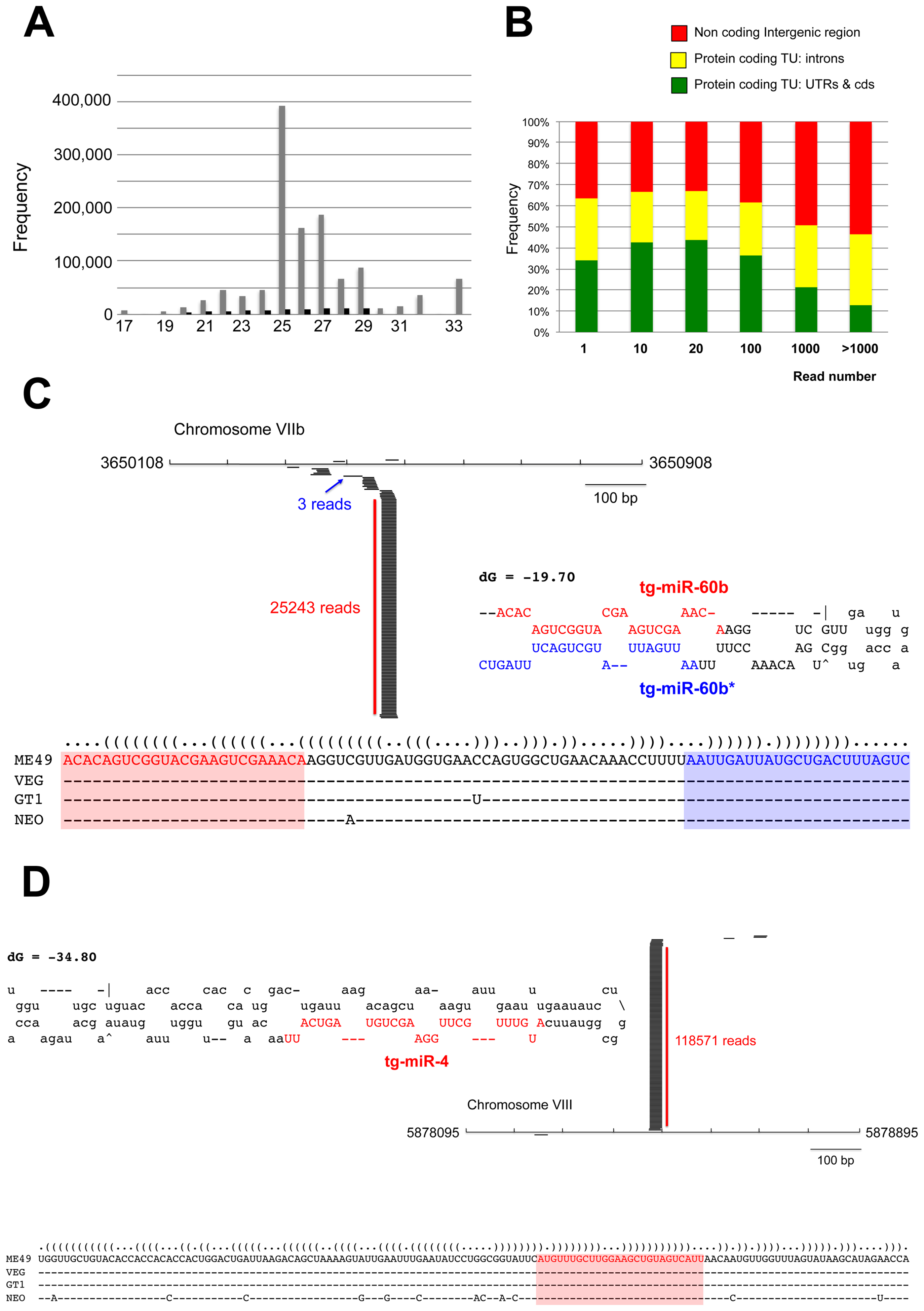 A repertoire of <i>Toxoplasma</i> endogenous small RNAs.