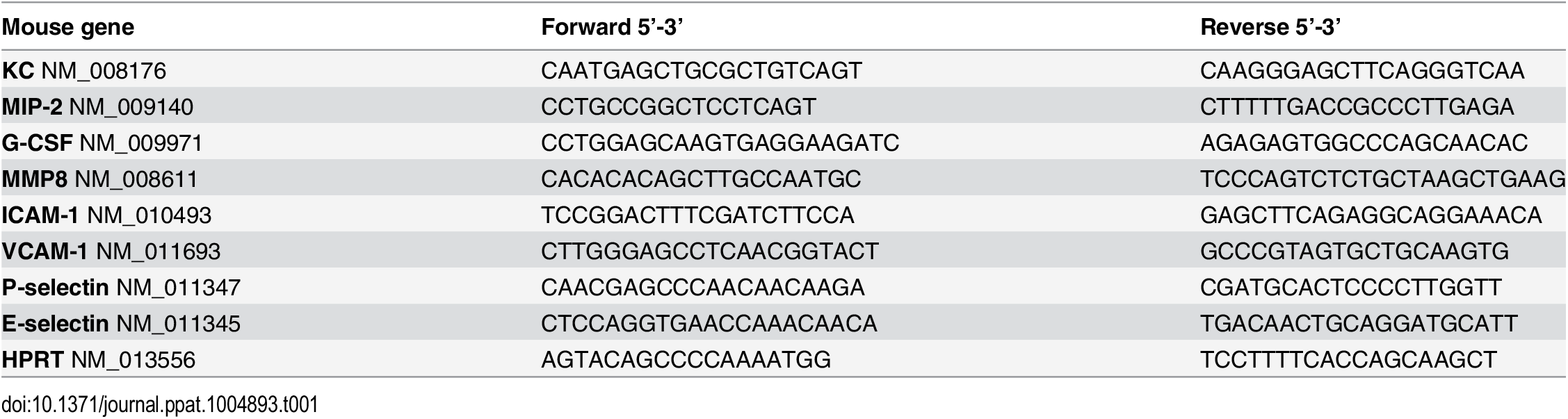 Sequences of the primers used in this study.