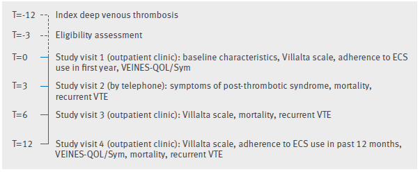 Study design (time in months). ECS=elastic compression stockings; VTE=venous thromboembolism