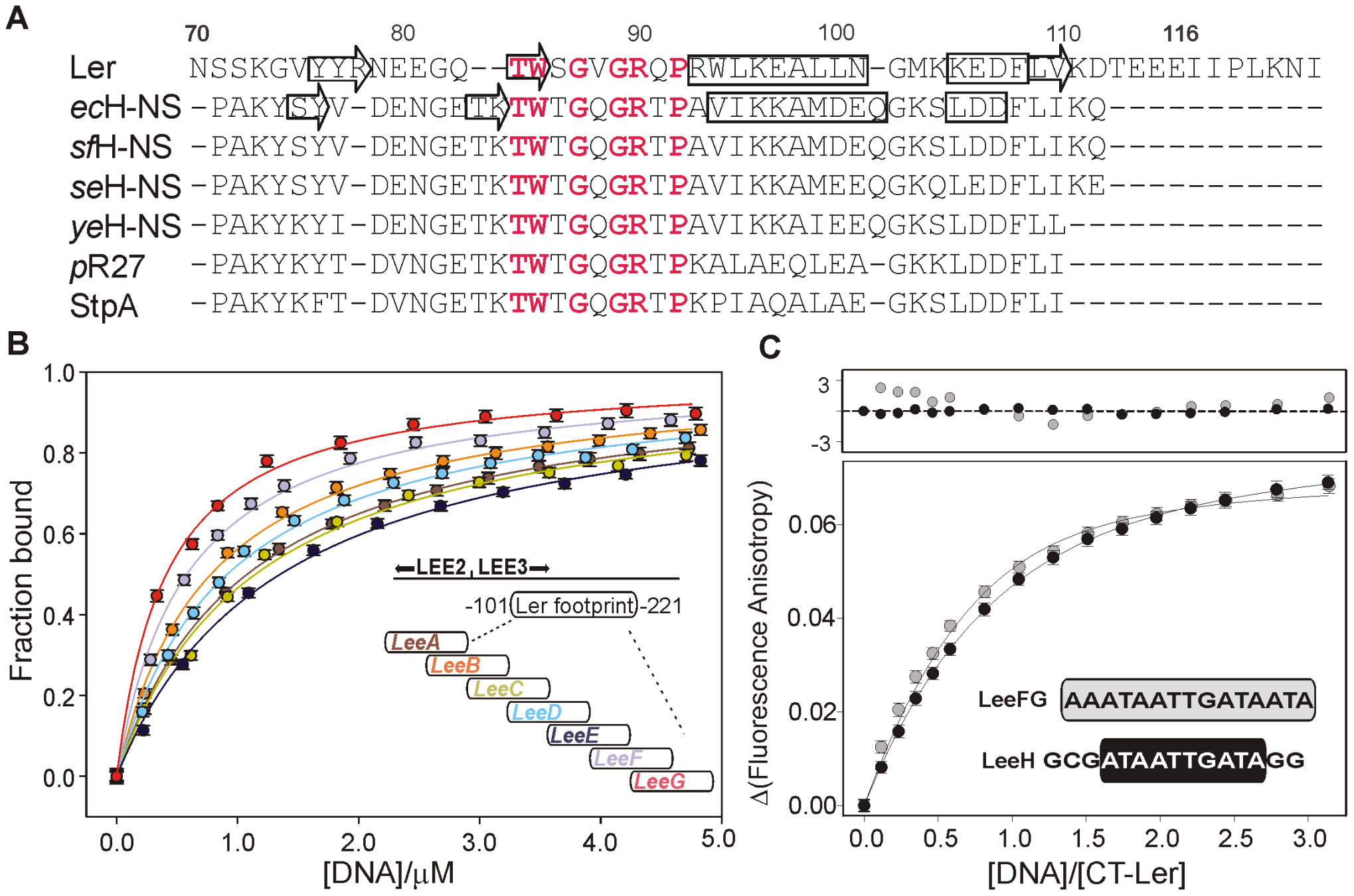 DNA-binding domain of selected members of the H-NS family of proteins and DNA fragment optimization.