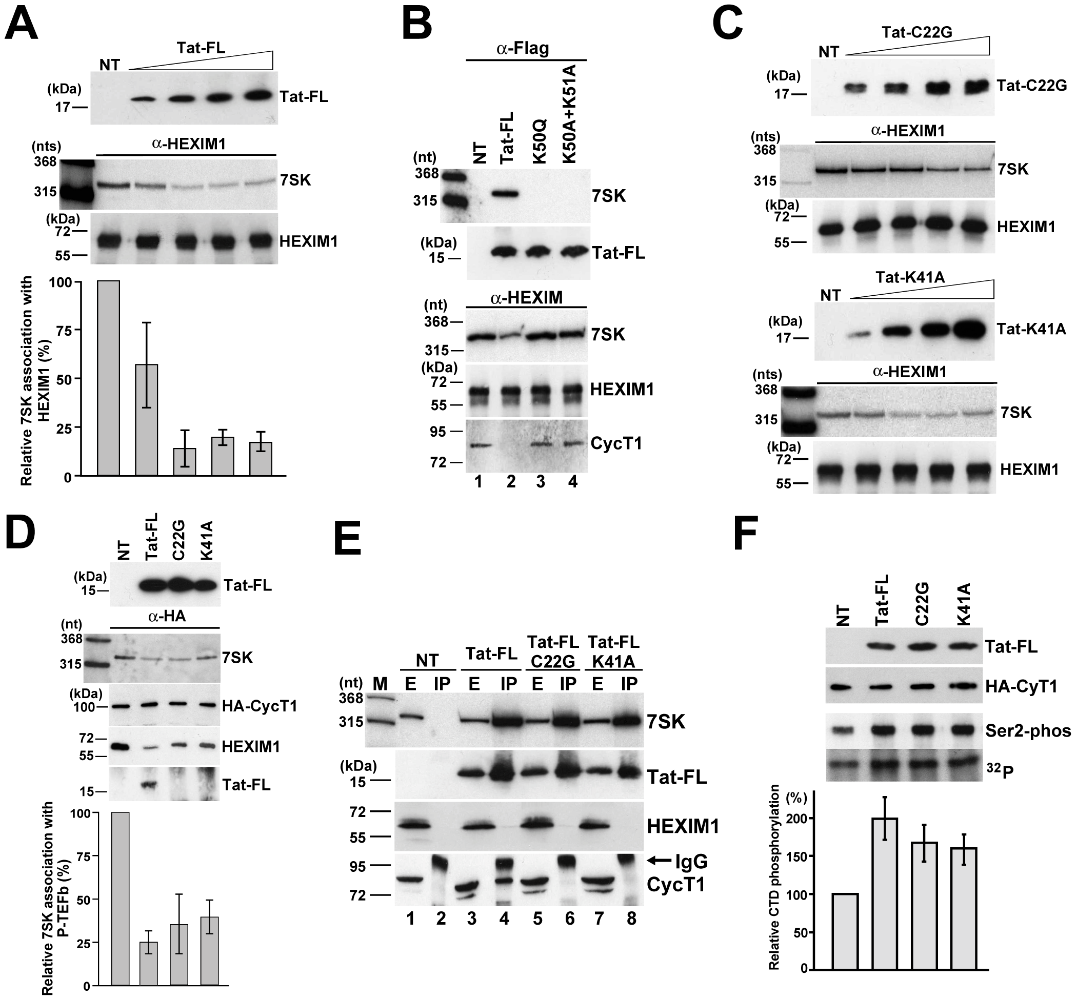 <i>In vivo</i> disruption of the 7SK/HEXIM/P-TEFb snRNP by HIV Tat.