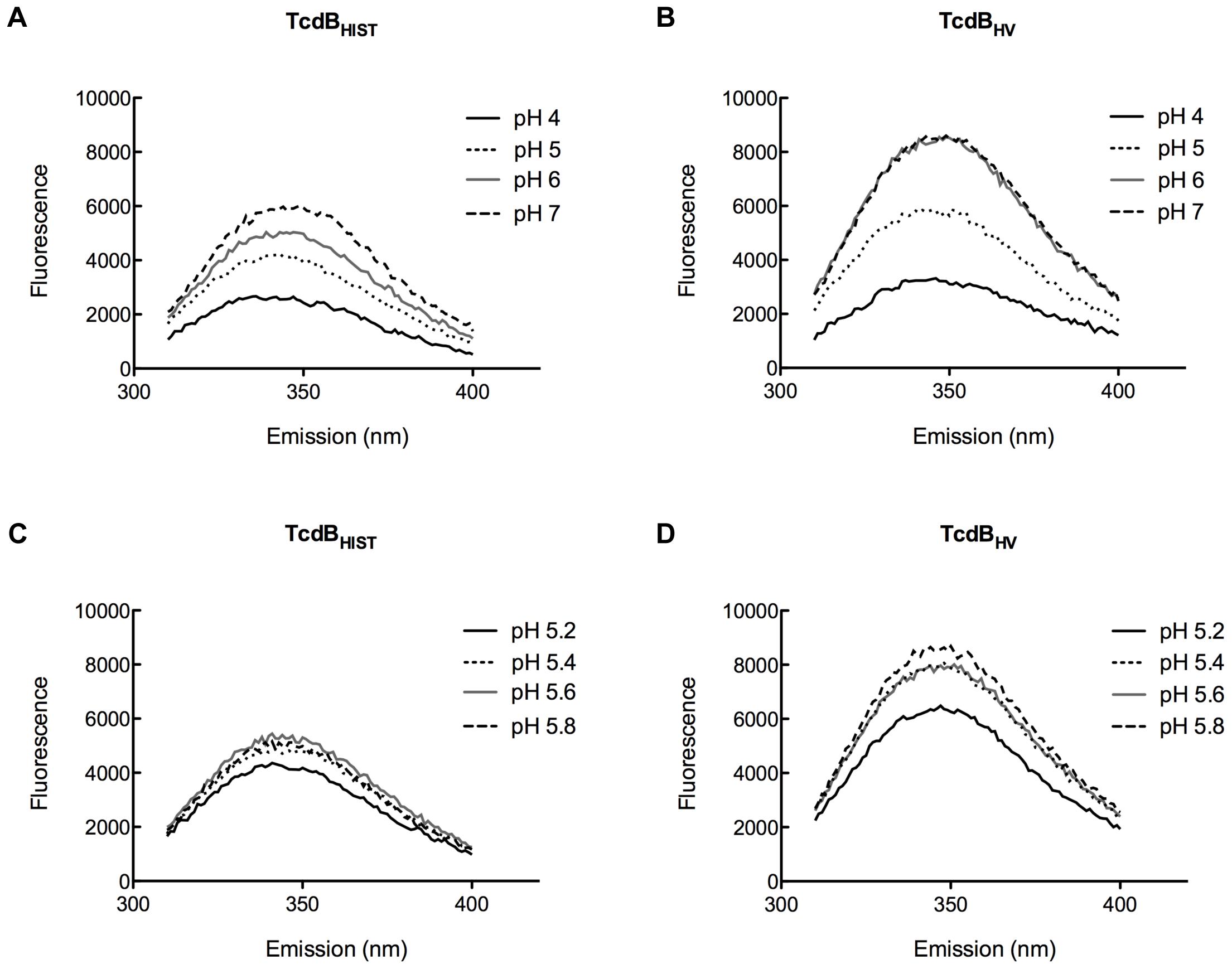 Tryptophan emission of TcdB<sub>HIST</sub> and TcdB<sub>HV</sub> at acidic and neutral pH.
