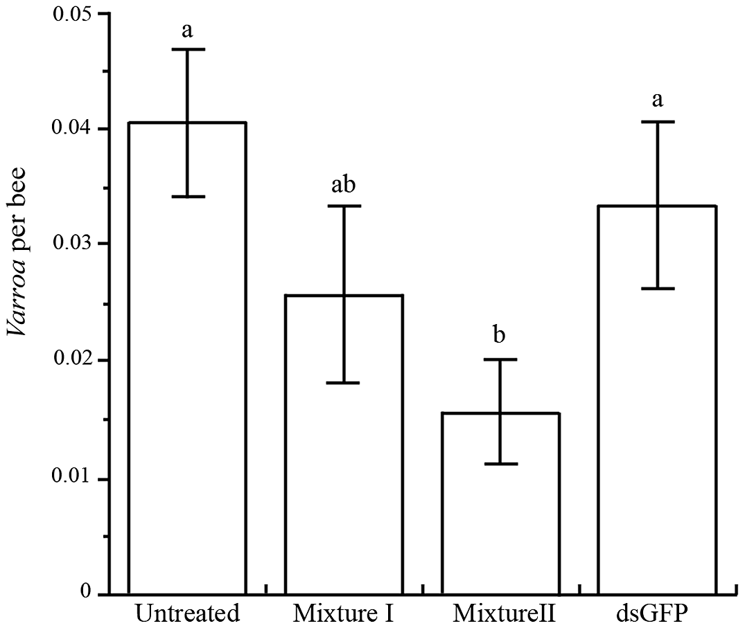 Mean (+ SE) number of <i>Varroa</i> mites per bee in four treatments.