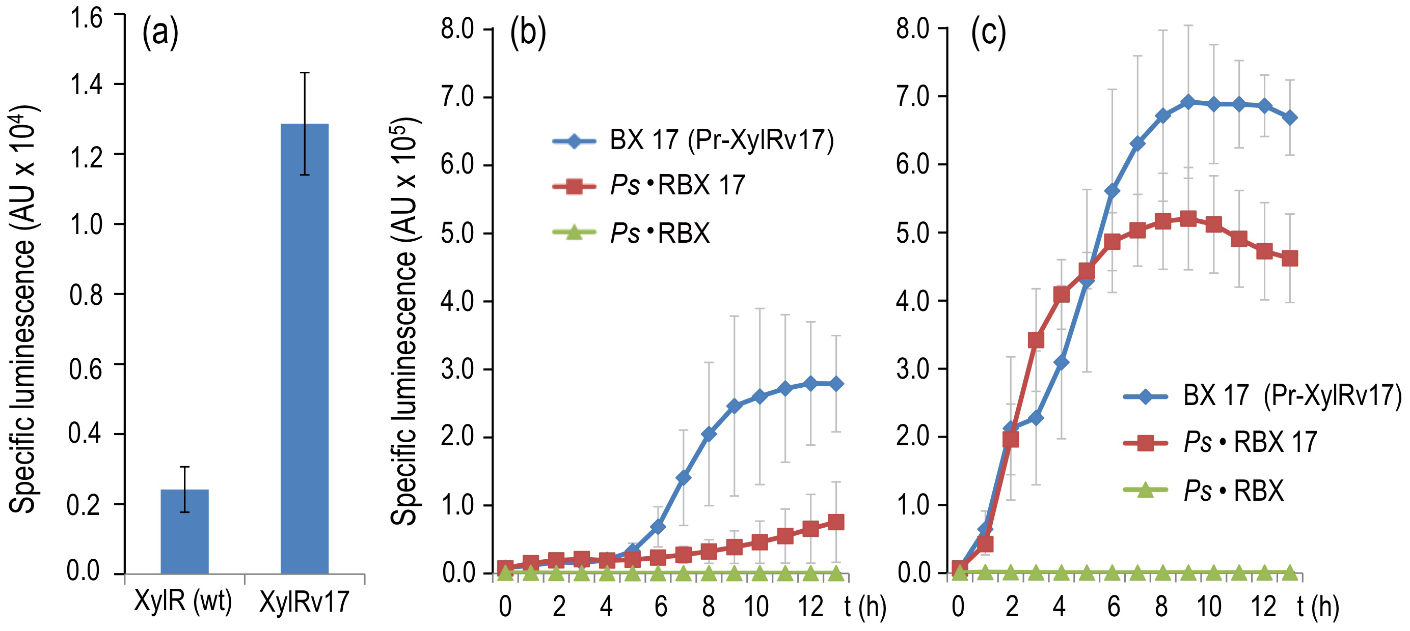 Breaking effector discrimination with a semi-constitutive variant of XylR.