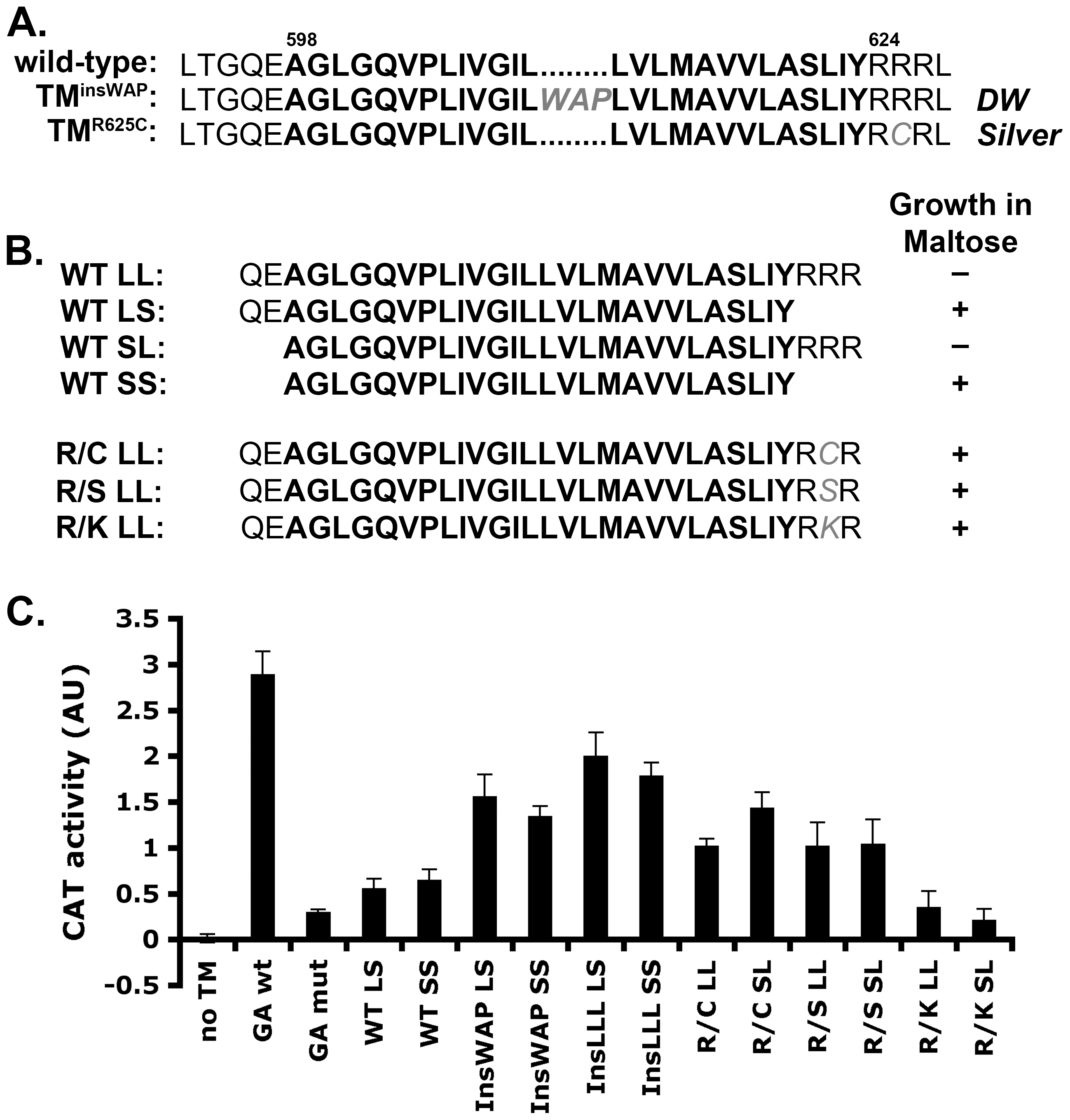 PMEL TMD mutations cause increased TMD–mediated dimerization.